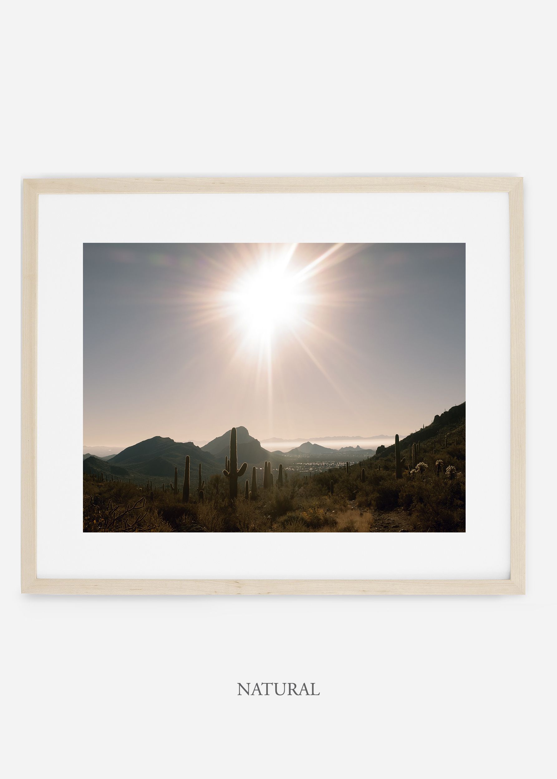 naturalframe-saguaroNo.15-wildercalifornia-art-wallart-cactusprint-homedecor-prints-arizona-botanical-artwork-interiordesign.jpg