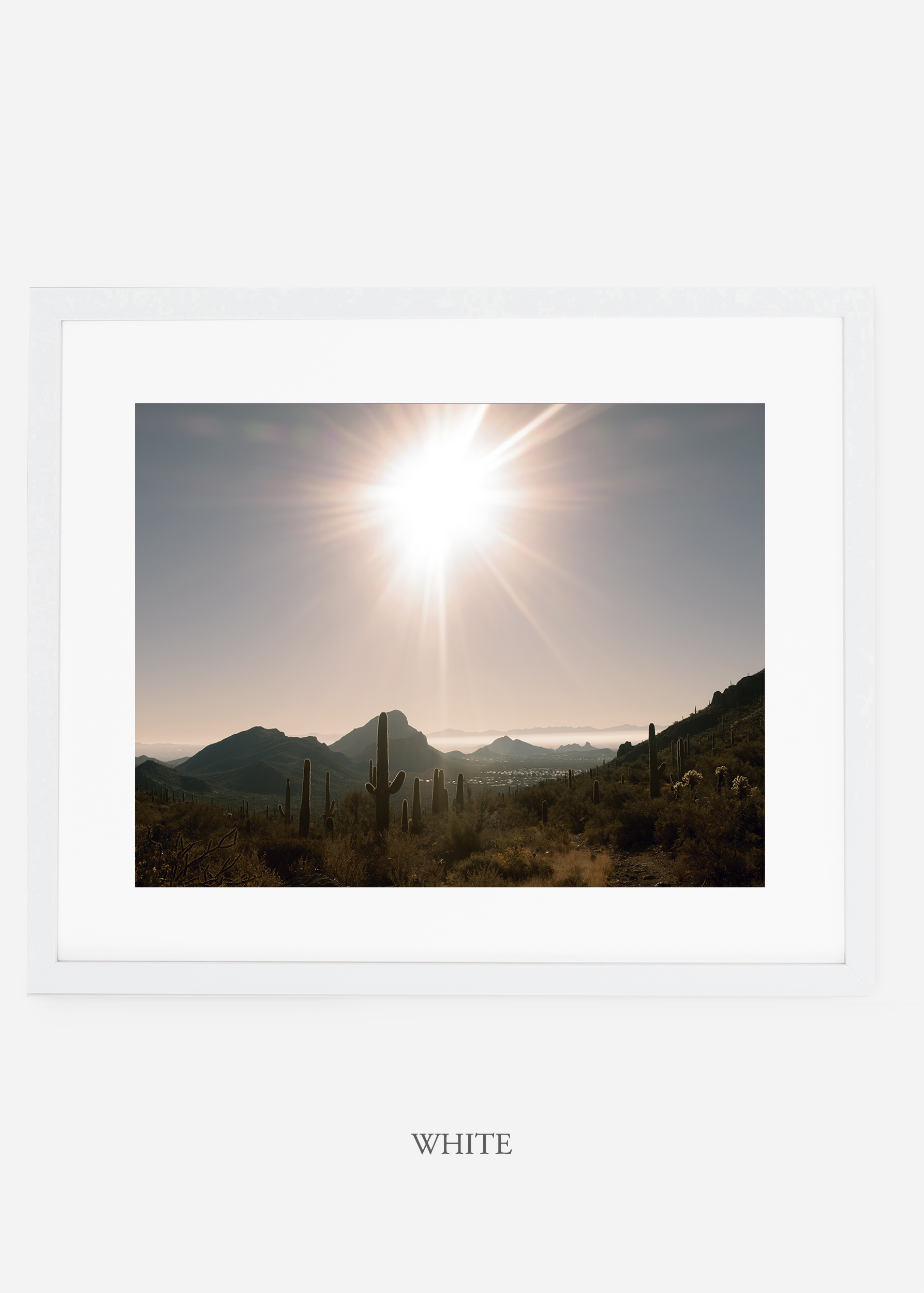 whiteframe-saguaroNo.15-wildercalifornia-art-wallart-cactusprint-homedecor-prints-arizona-botanical-artwork-interiordesign.jpg