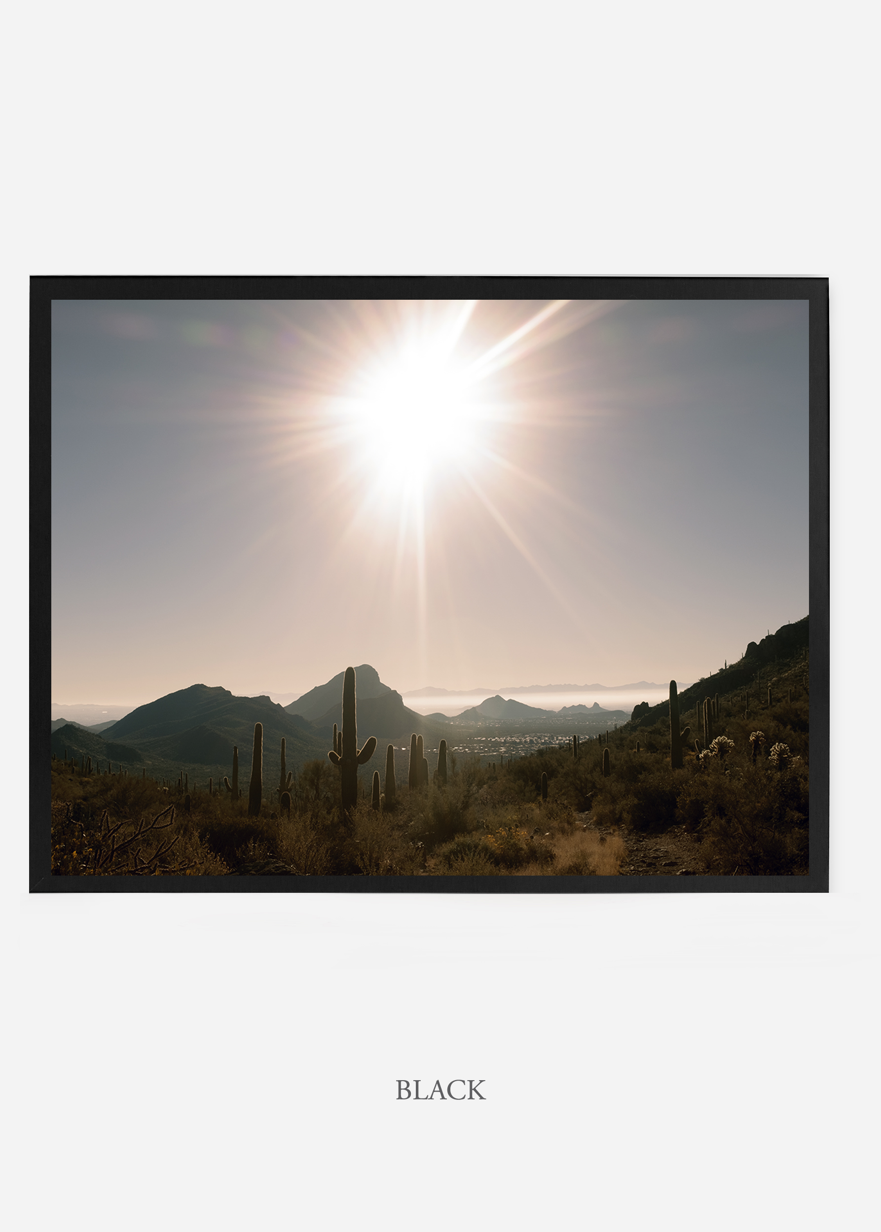 nomat_blackframe-saguaroNo.15-wildercalifornia-art-wallart-cactusprint-homedecor-prints-arizona-botanical-artwork-interiordesign.jpg