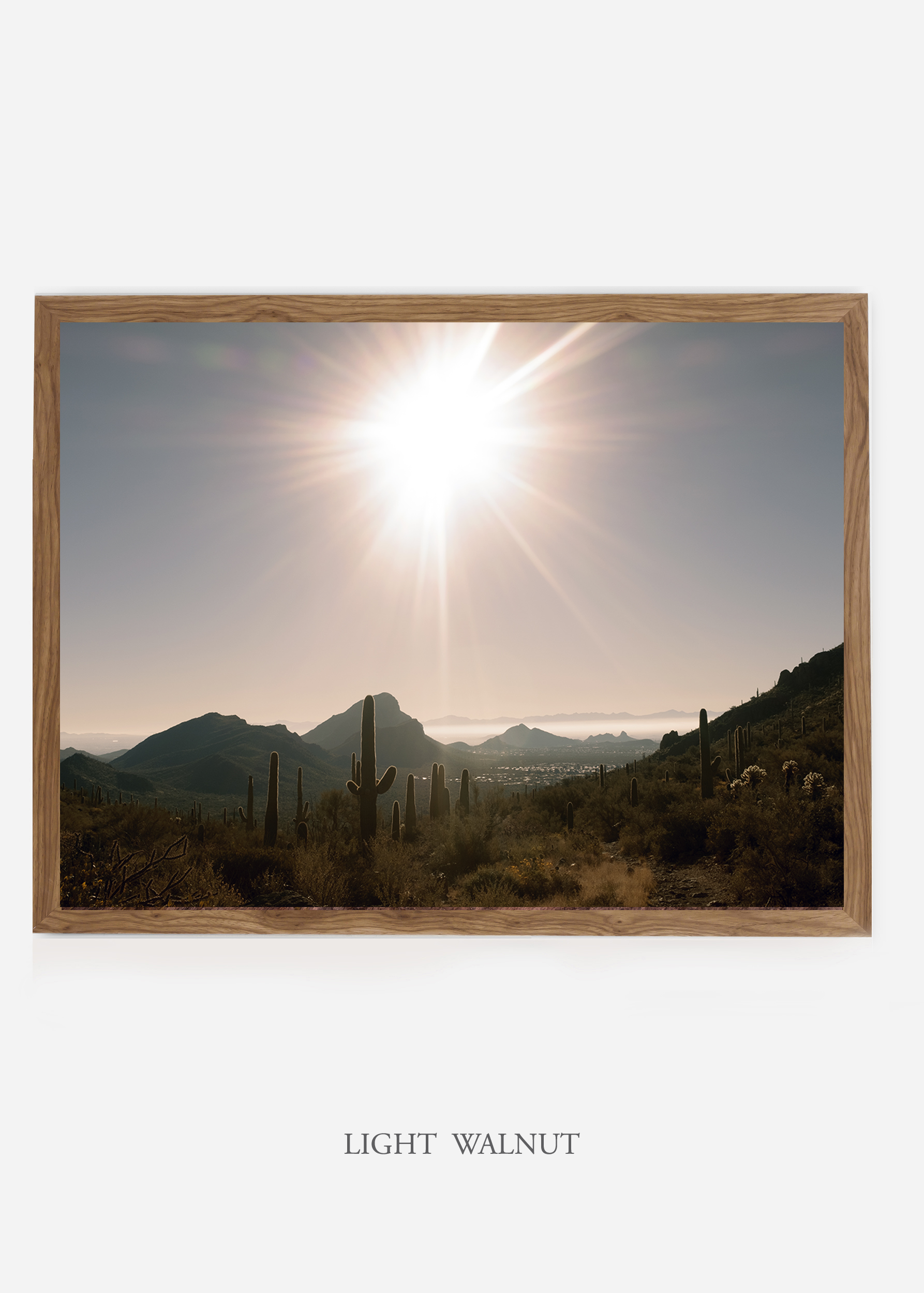 nomat_lightwalnutframe-saguaroNo.15-wildercalifornia-art-wallart-cactusprint-homedecor-prints-arizona-botanical-artwork-interiordesign.jpg