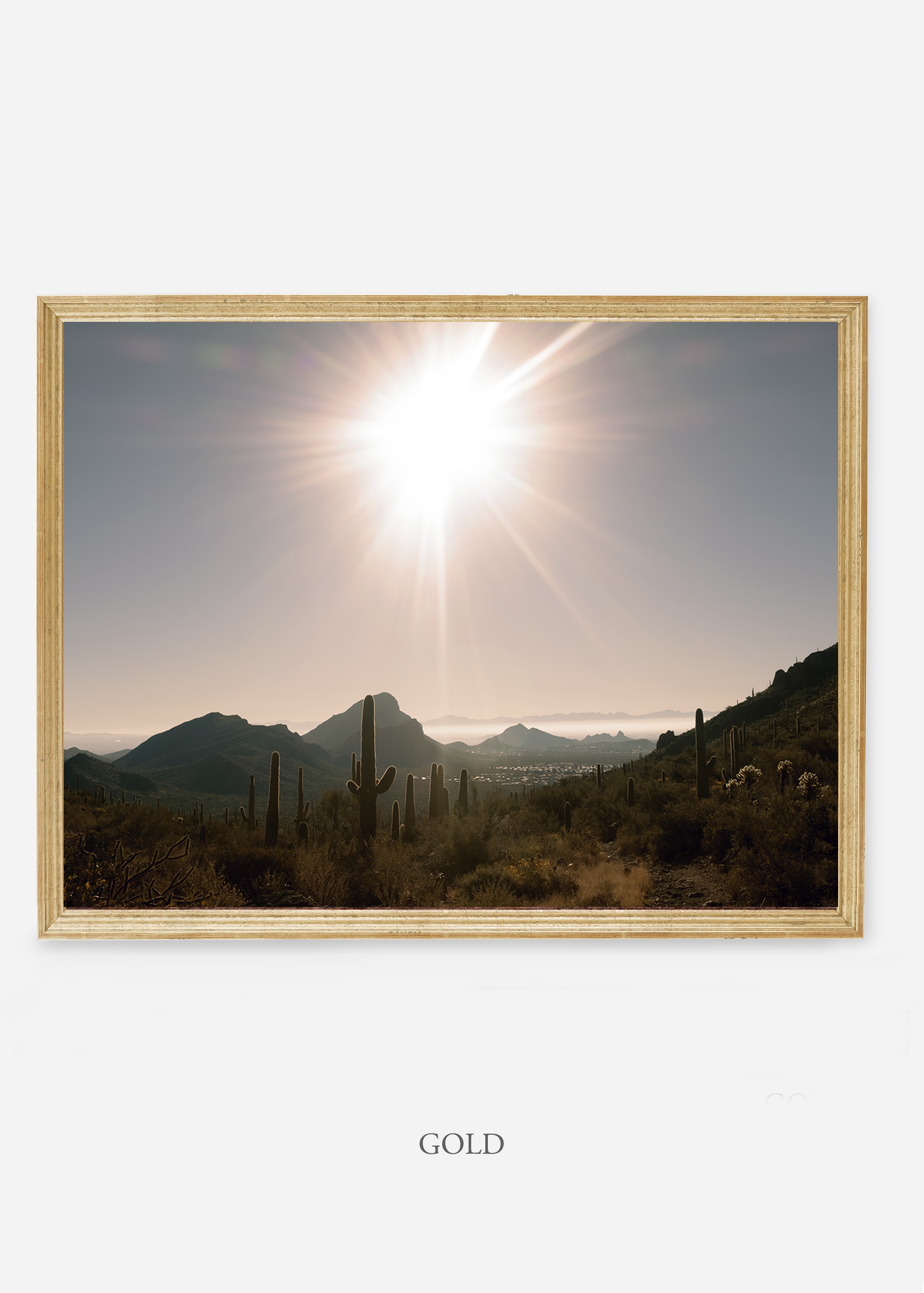 nomat-goldframe-saguaroNo.15-wildercalifornia-art-wallart-cactusprint-homedecor-prints-arizona-botanical-artwork-interiordesign.jpg