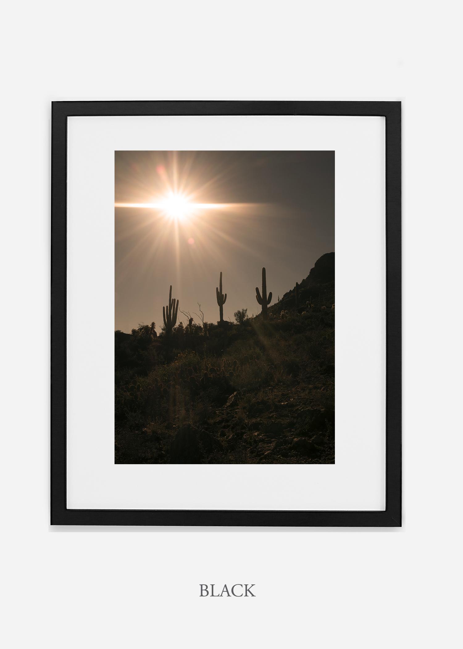 blackframe-saguaroNo.16-wildercalifornia-art-wallart-cactusprint-homedecor-prints-arizona-botanical-artwork-interiordesign.jpg