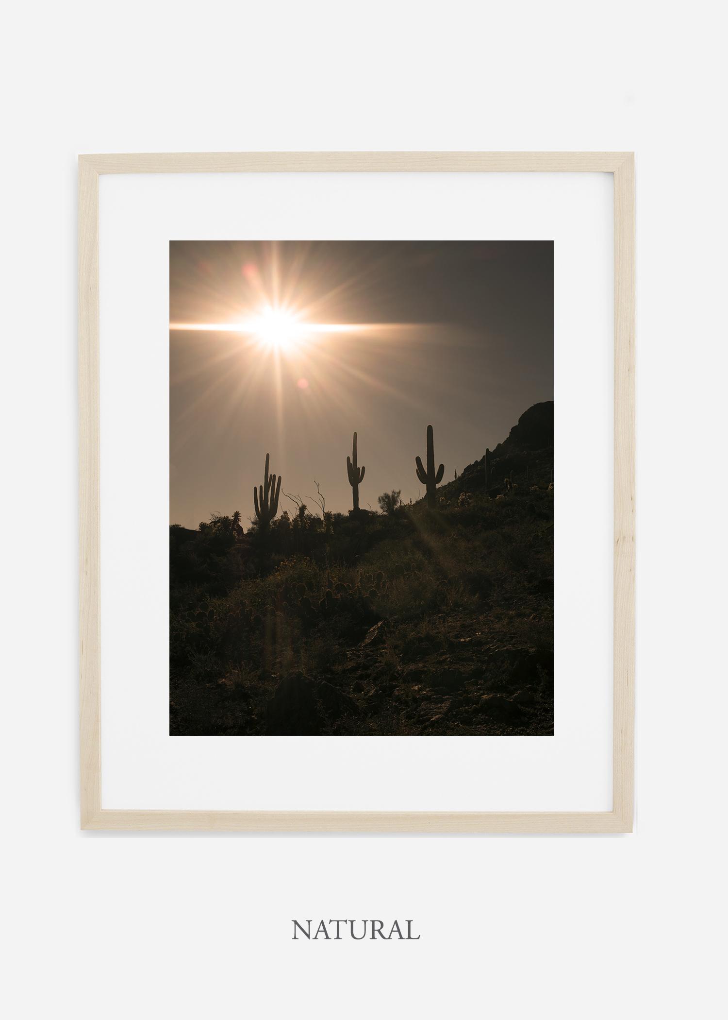 naturalframe-saguaroNo.16-wildercalifornia-art-wallart-cactusprint-homedecor-prints-arizona-botanical-artwork-interiordesign.jpg