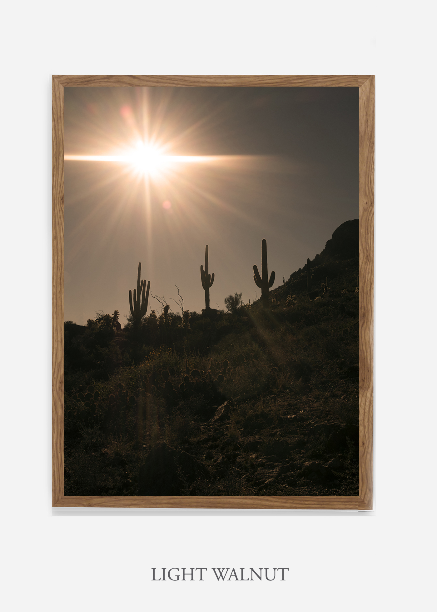 nomat-lightwalnutframe-saguaroNo.16-wildercalifornia-art-wallart-cactusprint-homedecor-prints-arizona-botanical-artwork-interiordesign.jpg