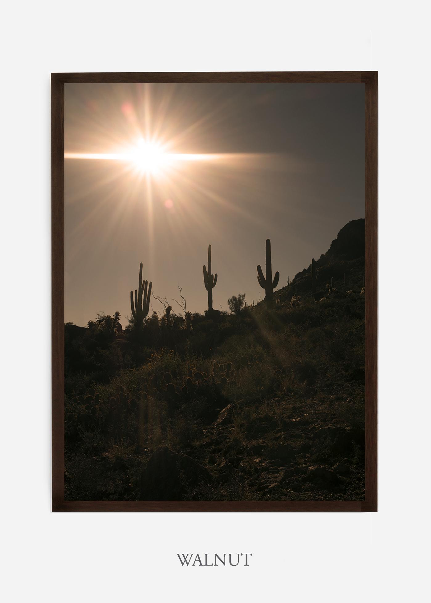 nomat-walnutframe-saguaroNo.16-wildercalifornia-art-wallart-cactusprint-homedecor-prints-arizona-botanical-artwork-interiordesign.jpg