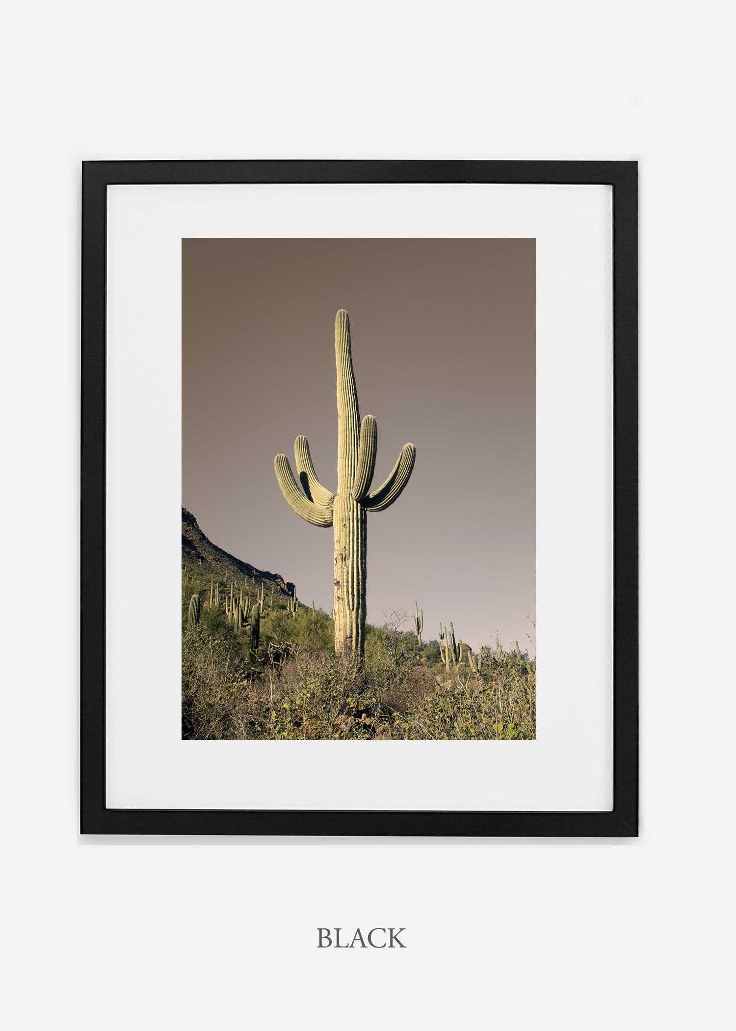 blackframe-saguaroNo.29-wildercalifornia-art-wallart-cactusprint-homedecor-prints-arizona-botanical-artwork-interiordesign.jpg