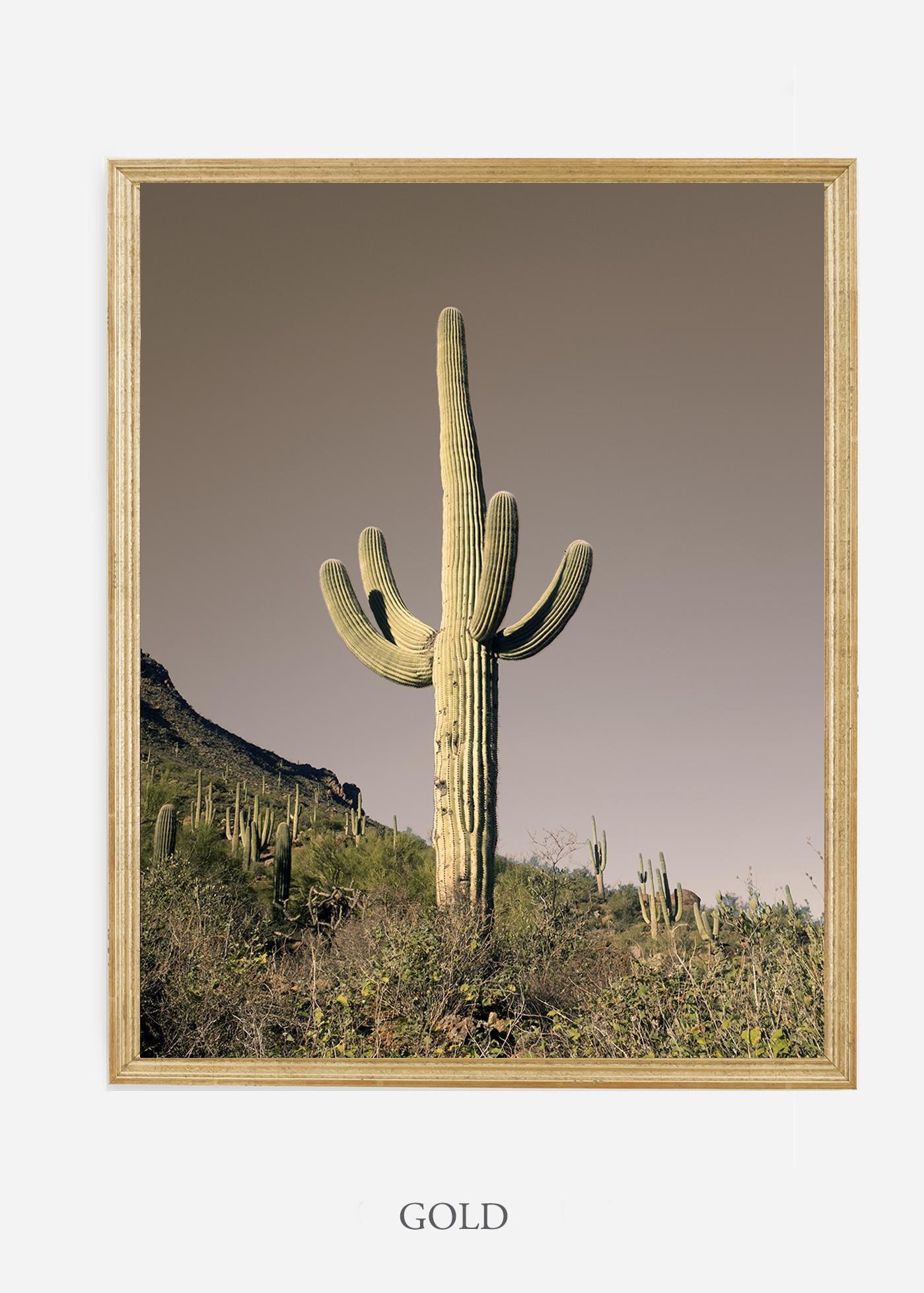 nomat-goldframe-saguaroNo.20-wildercalifornia-art-wallart-cactusprint-homedecor-prints-arizona-botanical-artwork-interiordesign.jpg