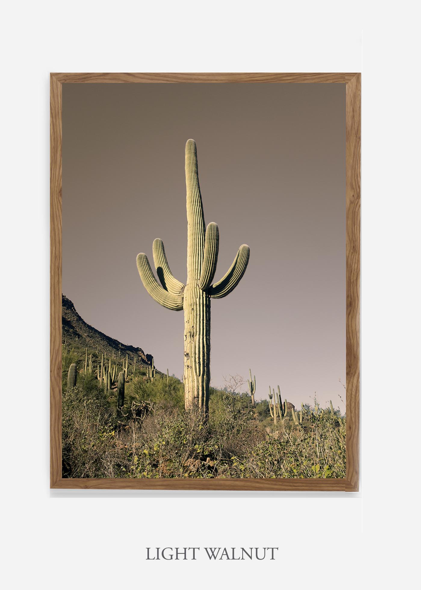 nomat-lightwalnutframe-saguaroNo.20-wildercalifornia-art-wallart-cactusprint-homedecor-prints-arizona-botanical-artwork-interiordesign.jpg