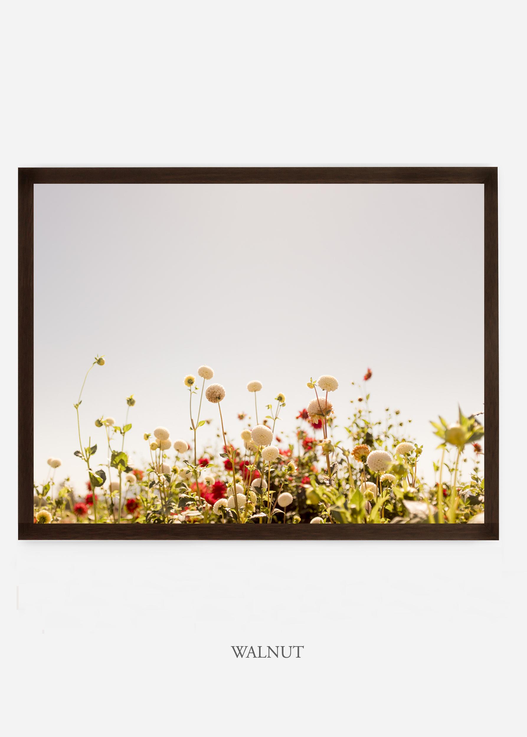NoMat-DarkWalnutFrame-DahliaNo.5-Wilder-California-Art-Floral-Home-decor-Prints-Dahlia-Botanical-Artwork-Interior-design.jpg