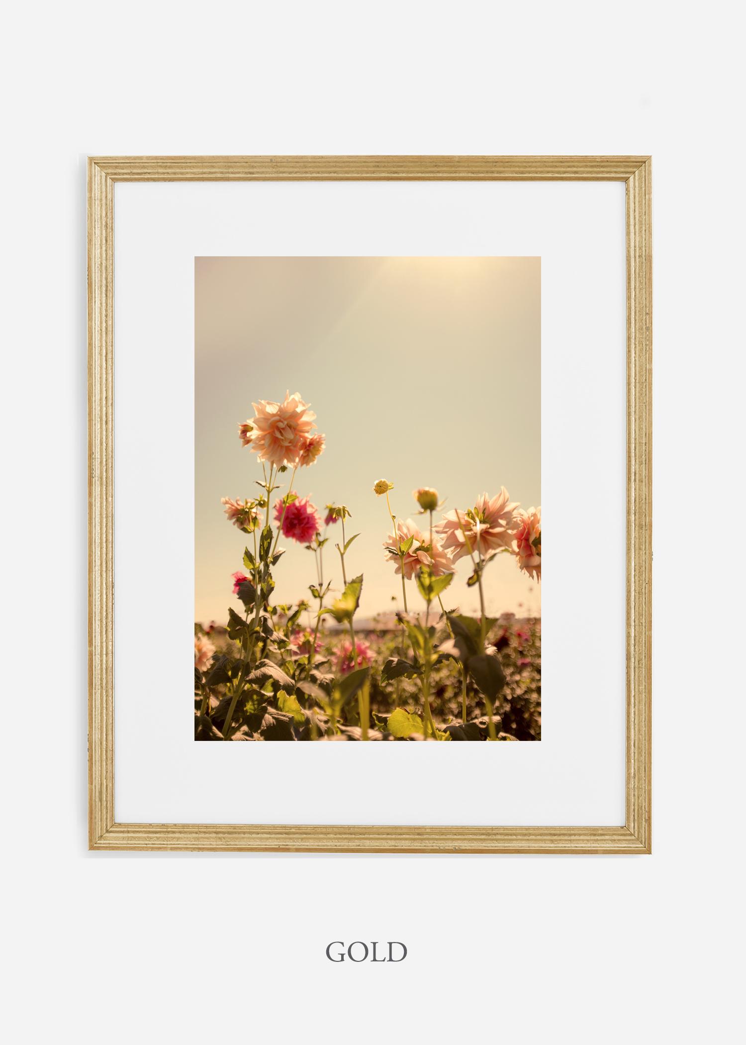 DahliaNo.3_goldframe__No.1_interiordesign_botanicalprint_art.jpg