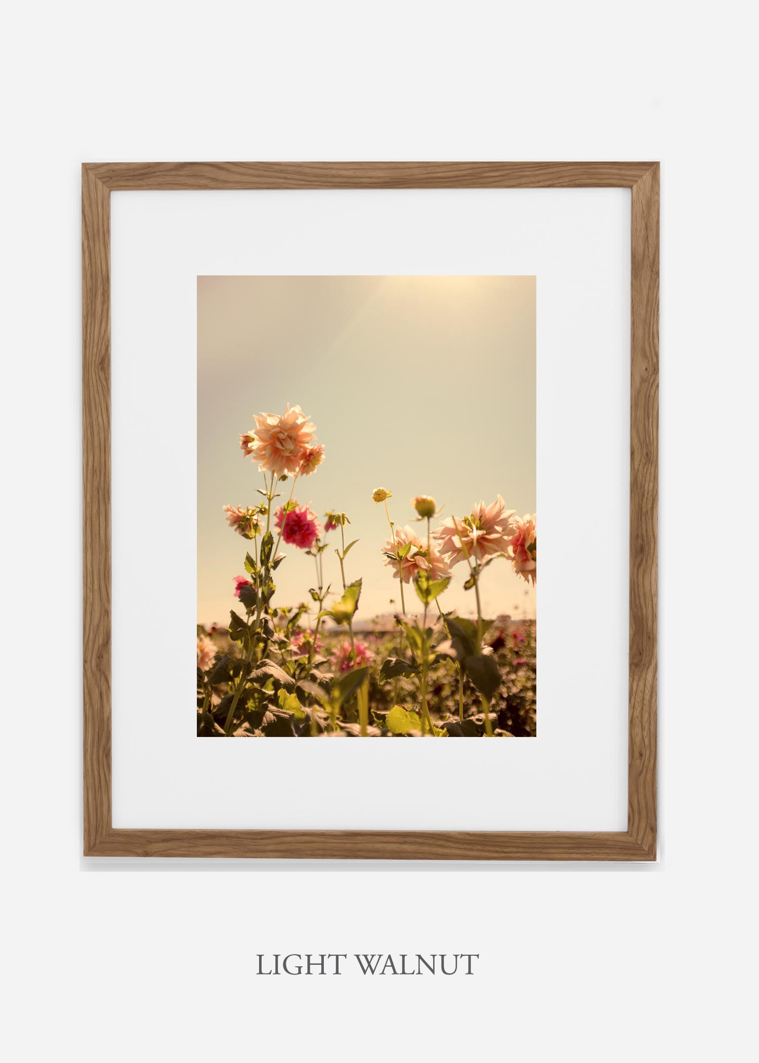 DahliaNo.3_lightwalnutframe__mat_interiordesign_botanicalprint_art.jpg