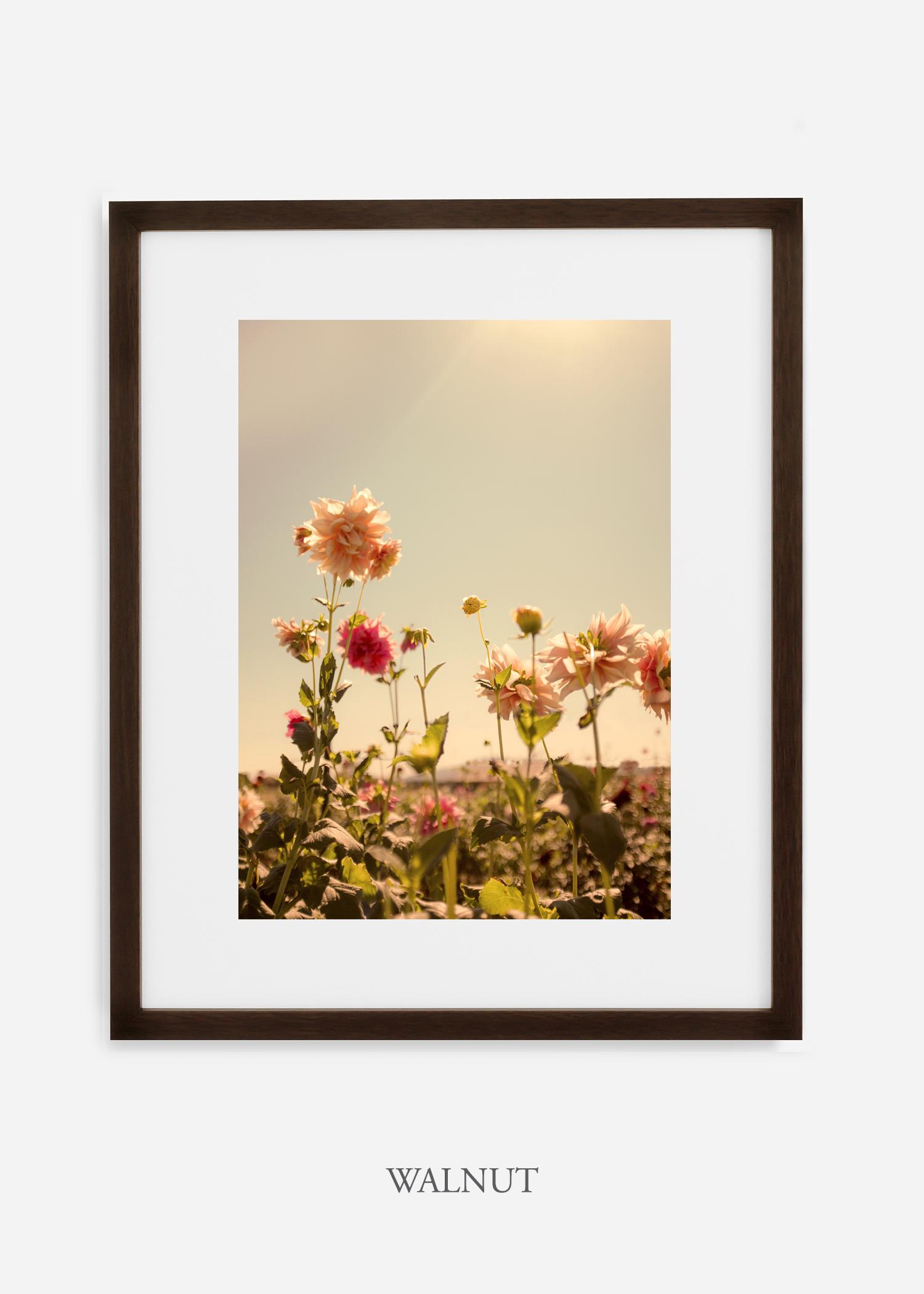 DahliaNo.3_walnutframe__mat_interiordesign_botanicalprint_art.jpg