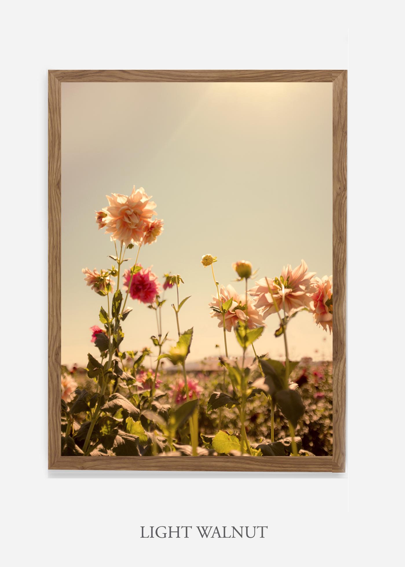 DahliaNo.3_lightwalnutframe__No.1_interiordesign_botanicalprint_art.jpg