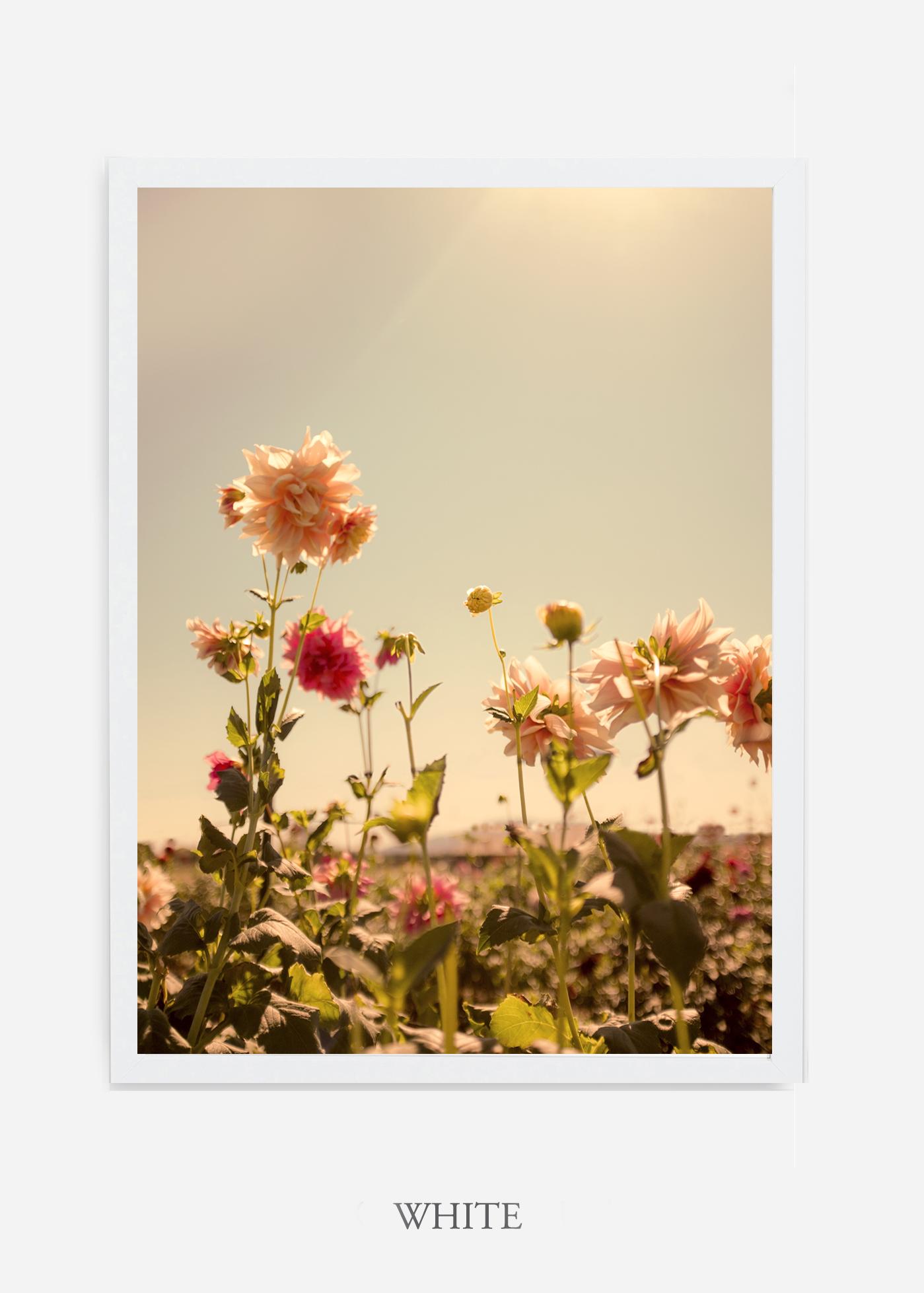 DahliaNo.3_whiteframe__NoMat_interiordesign_botanicalprint_art.jpg