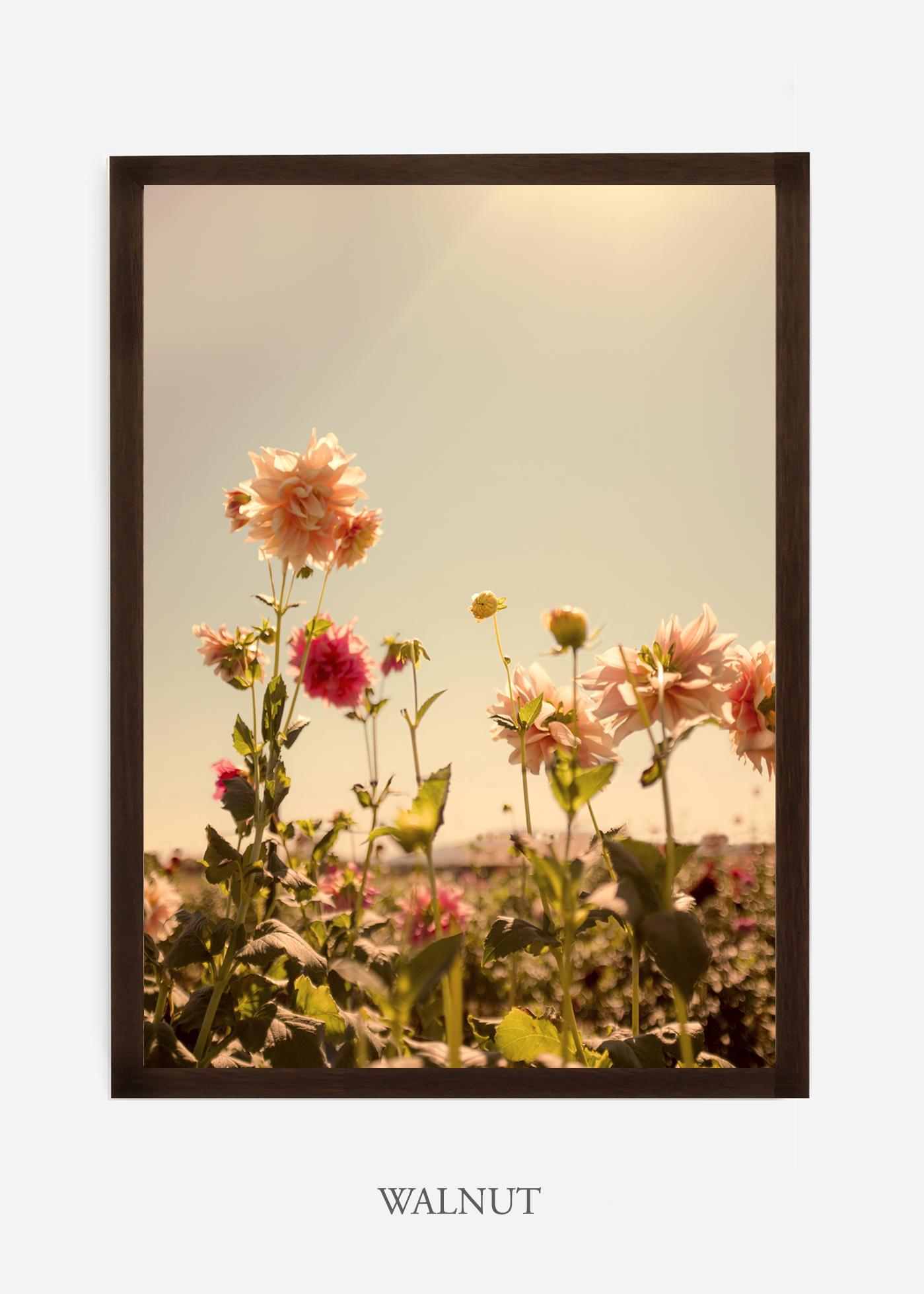 DahliaNo.3_walnutframe__NoMat_interiordesign_botanicalprint_art.jpg