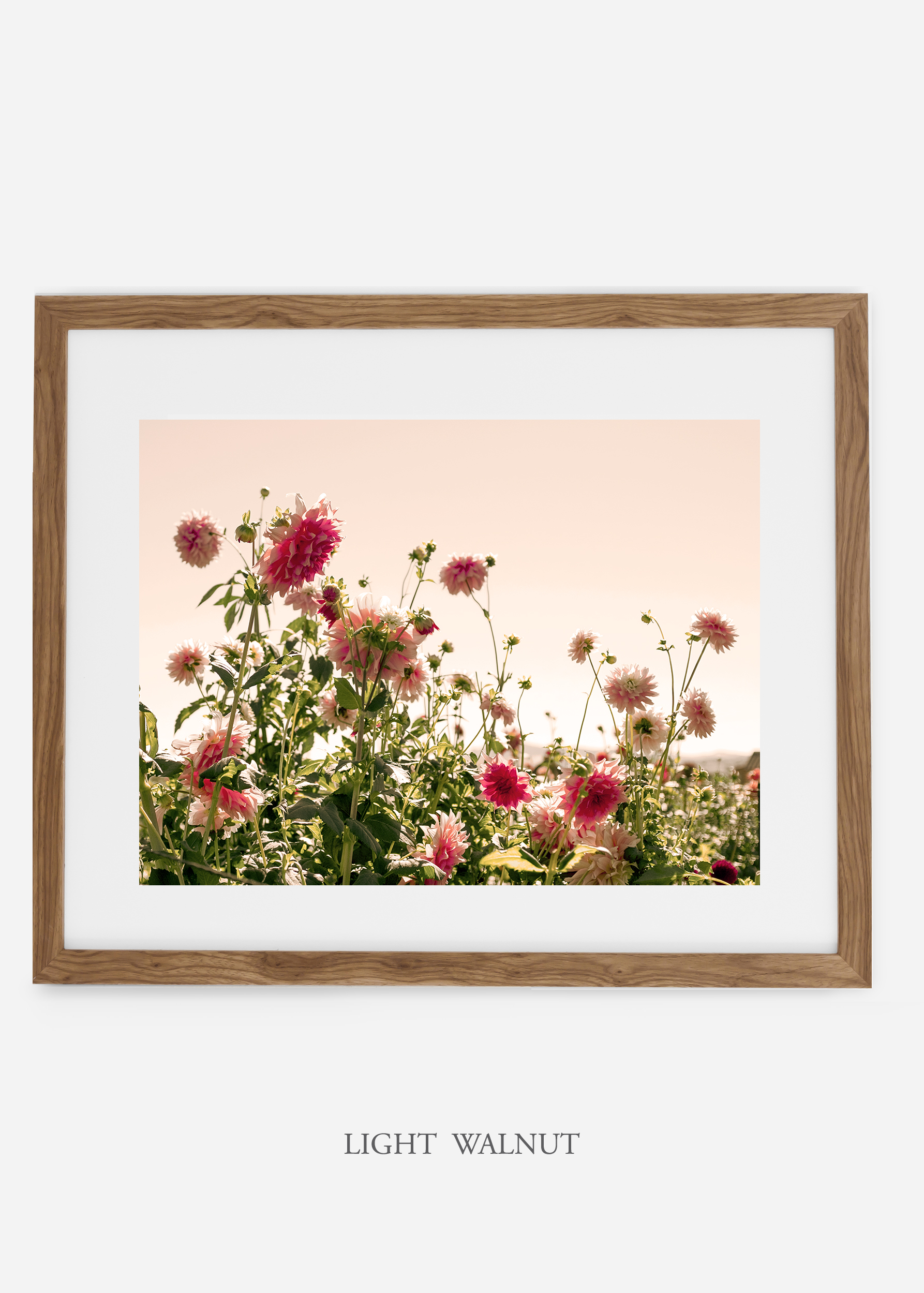 wilder-california-lightwalnutframe-dahlia-7-minimal-botanical-print-art-interior-design.jpg