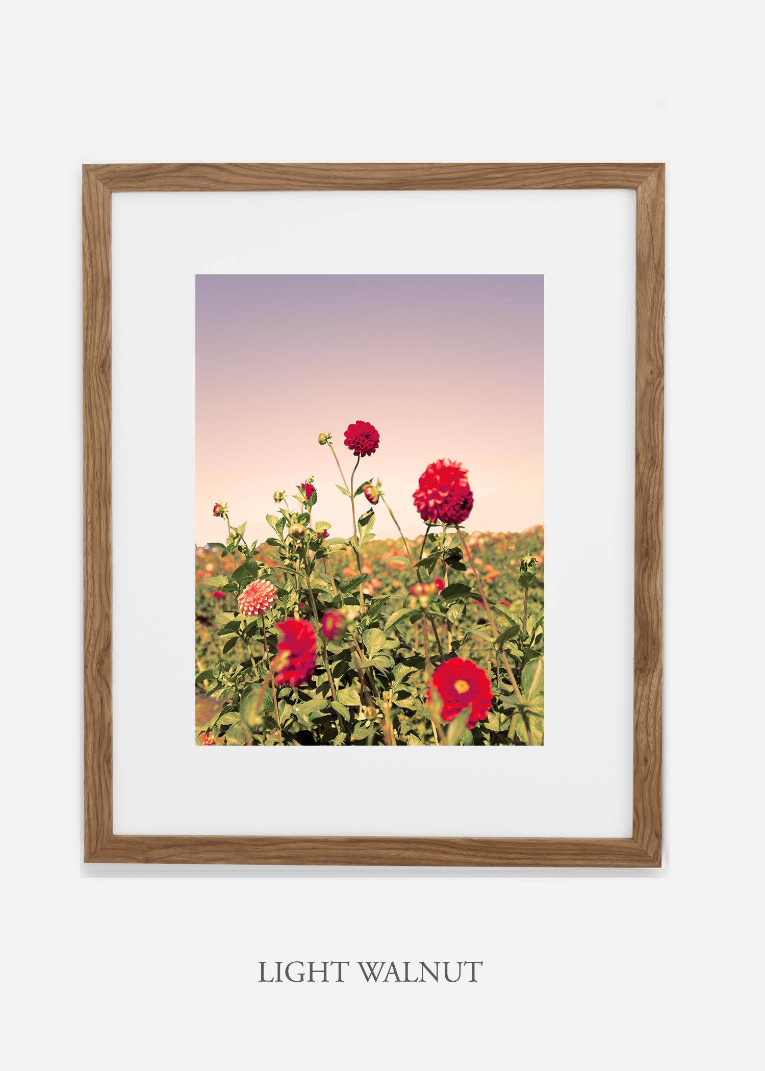 DahliaNo.8-light-walnut-frame-mat-interior-design-botanical-print-art-wilder-california-wilder-paper.jpg