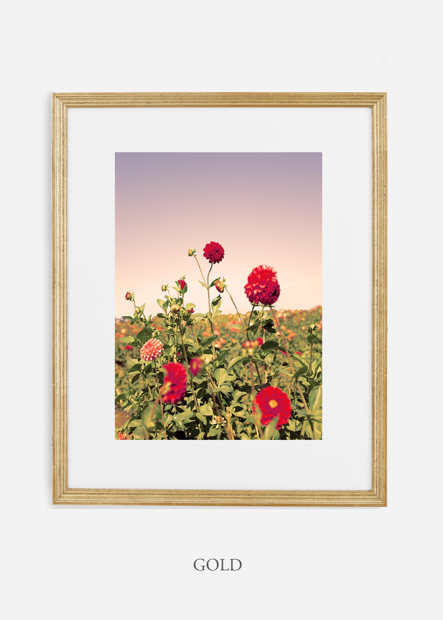 DahliaNo.8-gold-frame-mat-interior-design-botanical-print-art-wilder-california-wilder-paper.jpg
