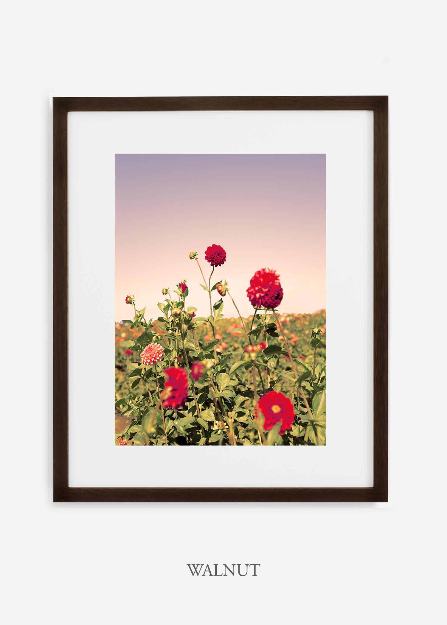 DahliaNo.8-walnut-frame-mat-interior-design-botanical-print-art-wilder-california-wilder-paper.jpg