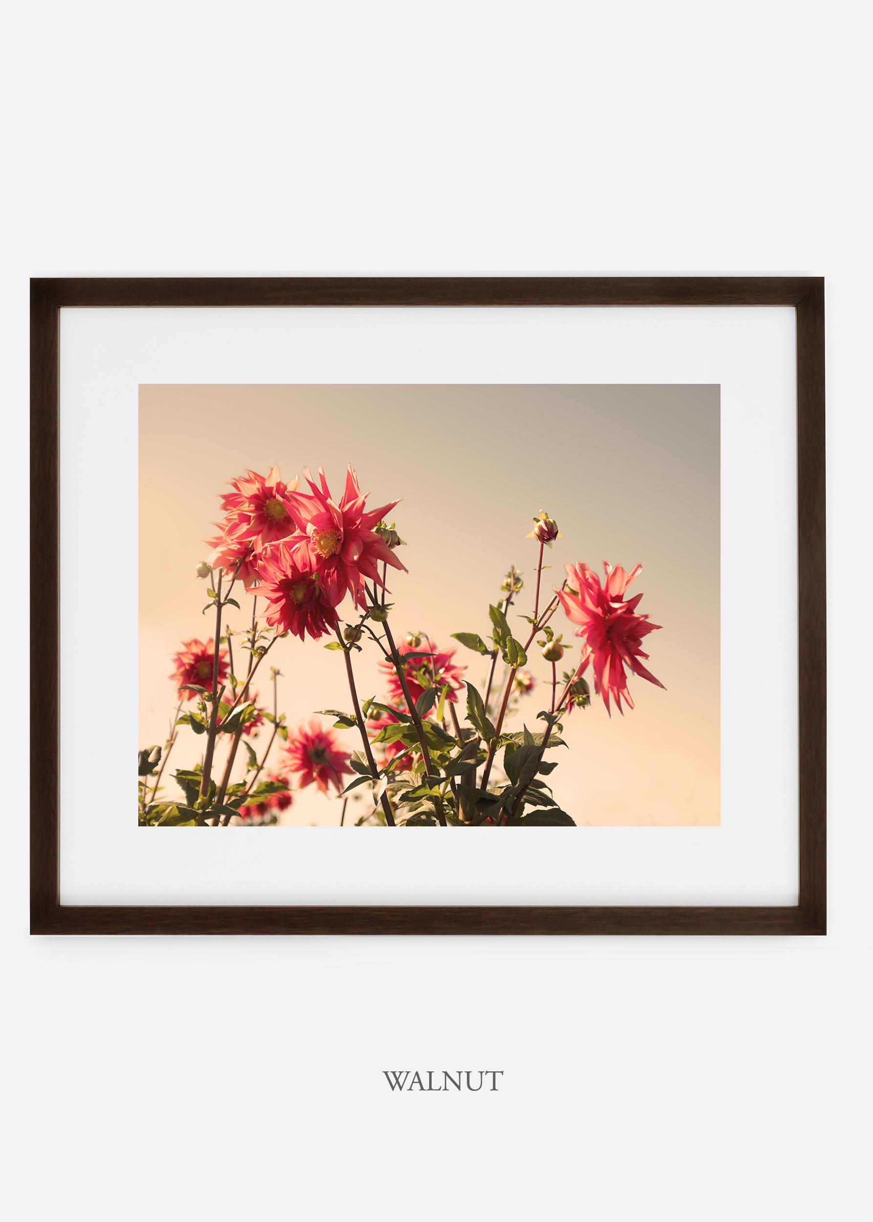 wilder-california-walnutframe-dahlia-9-minimal-botanical-print-art-interior-design.jpg