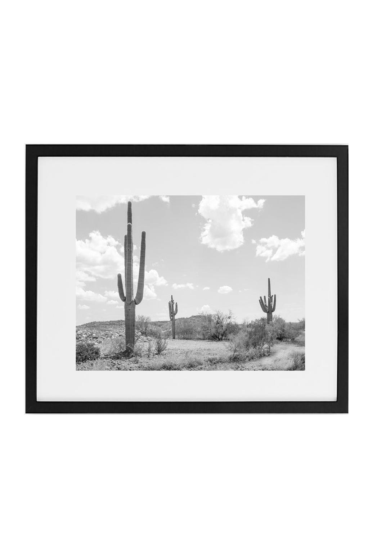 Three Saguaro