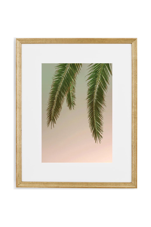 Stormy Palm Tree