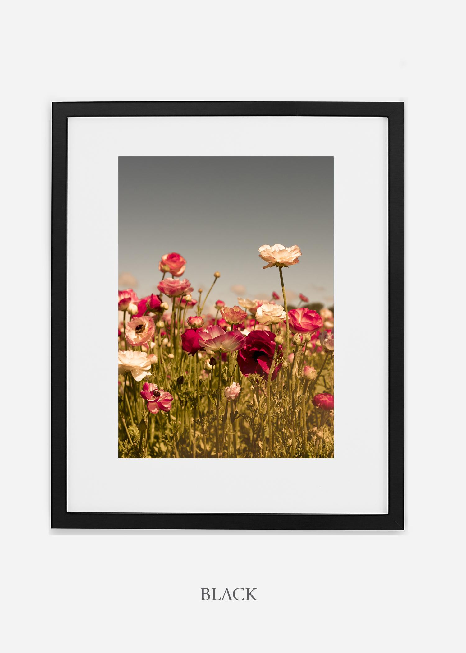 wilder-california-Floral-No.3_black-frame-mat-interior-design-botanical-print-art-floral-art.jpg