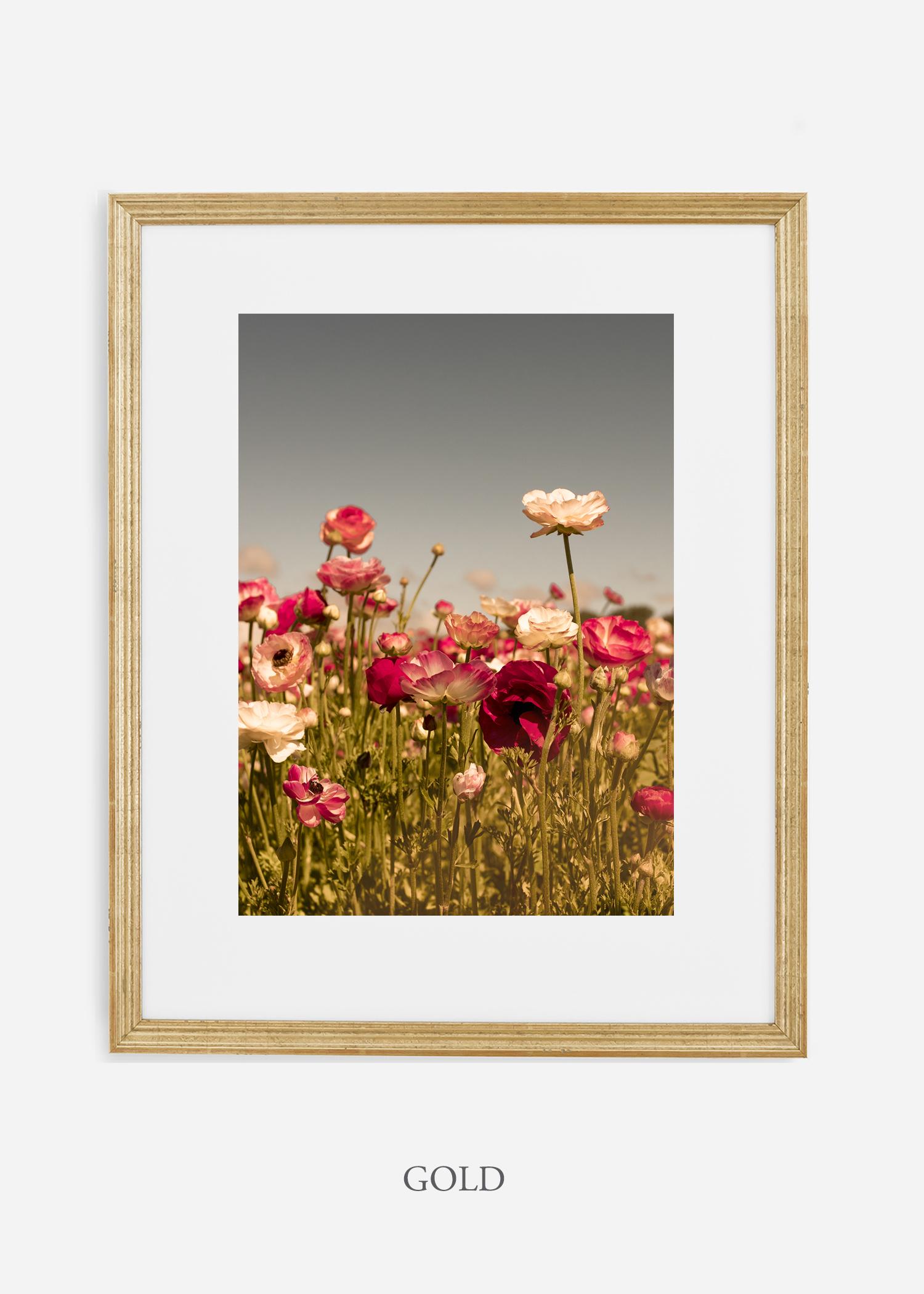 wilder-california-Floral-No.3-gold-frame-mat-interior-design-botanical-print-art-floral-art.jpg