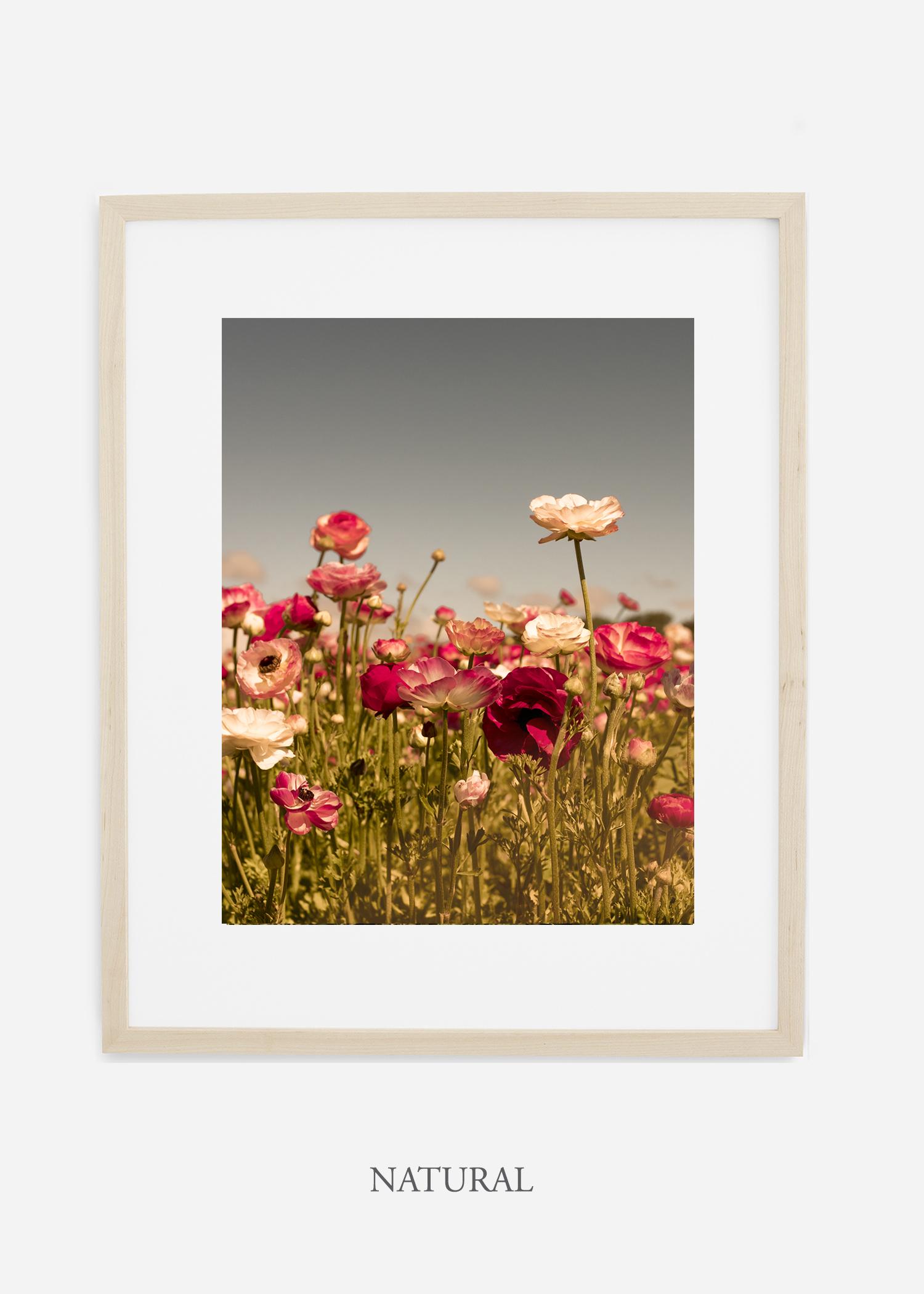 wilder-california-Floral-No.3-natural-wood-frame-mat-interior-design-botanical-print-art-floral-art.jpg