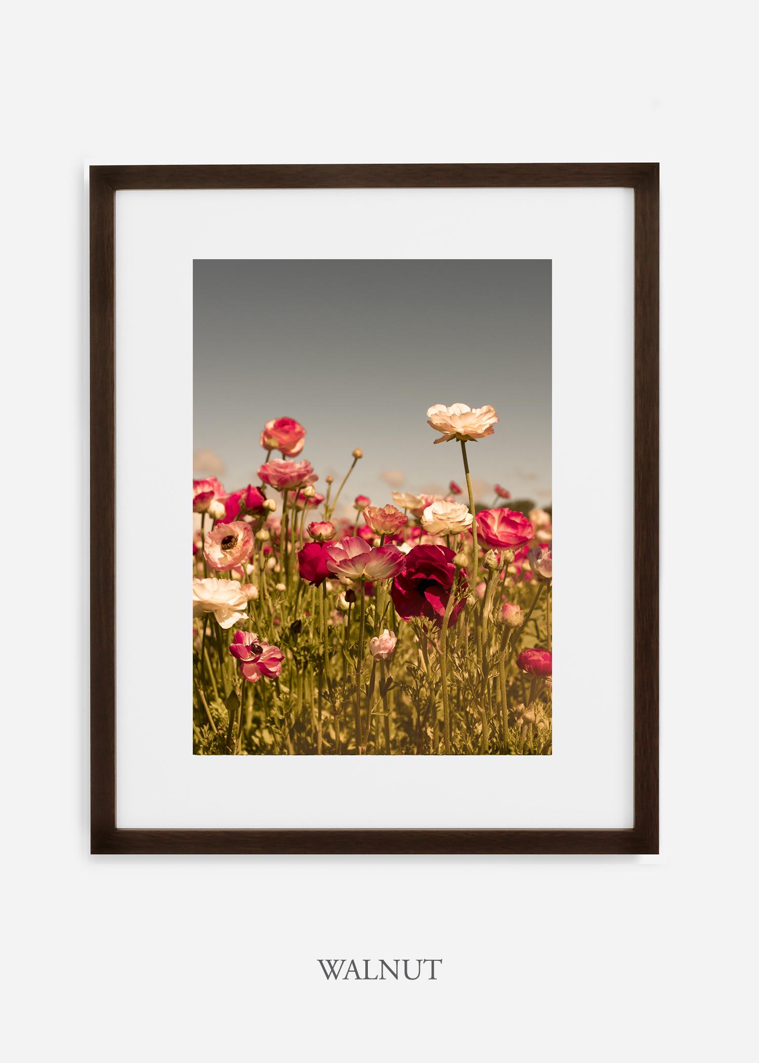 wilder-california-Floral-No.3-walnut-frame-mat-interior-design-botanical-print-art-floral-art.jpg