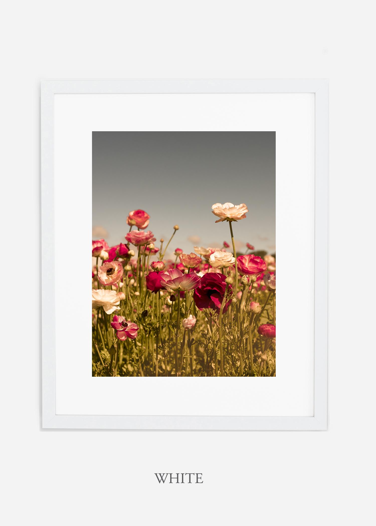 wilder-california-Floral-No.3-white-frame-mat-interior-design-botanical-print-art-floral-art.jpg