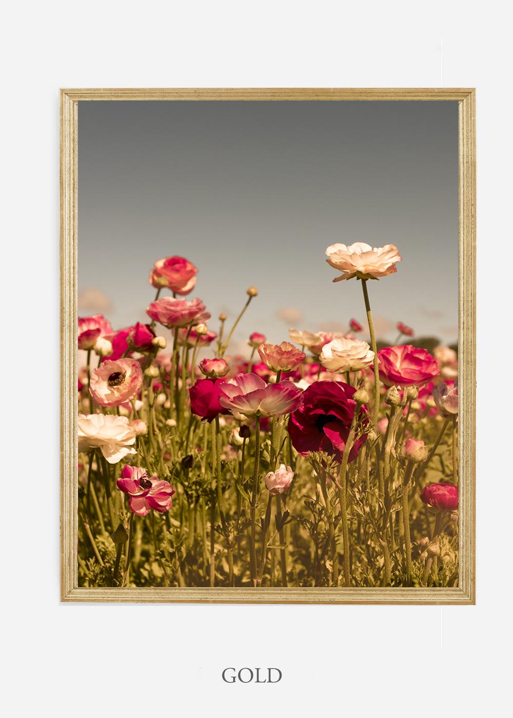 wilder-california-Floral-No.3-gold-frame-no-mat-interior-design-botanical-print-art-floral-art.jpg
