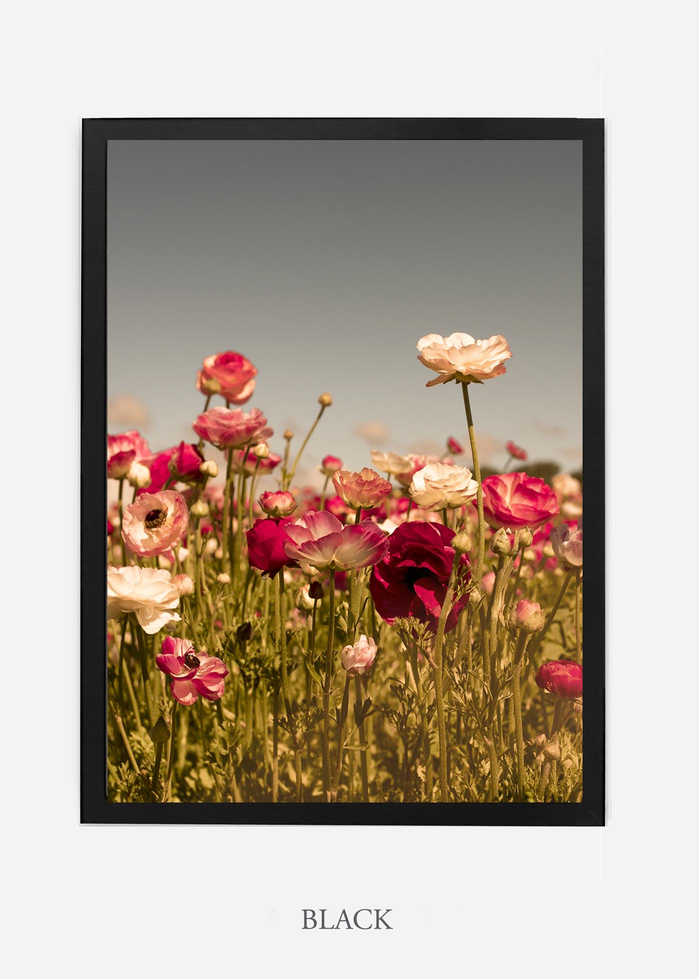 wilder-california-Floral-No.3-black-frame-no-mat-interior-design-botanical-print-art-floral-art.jpg