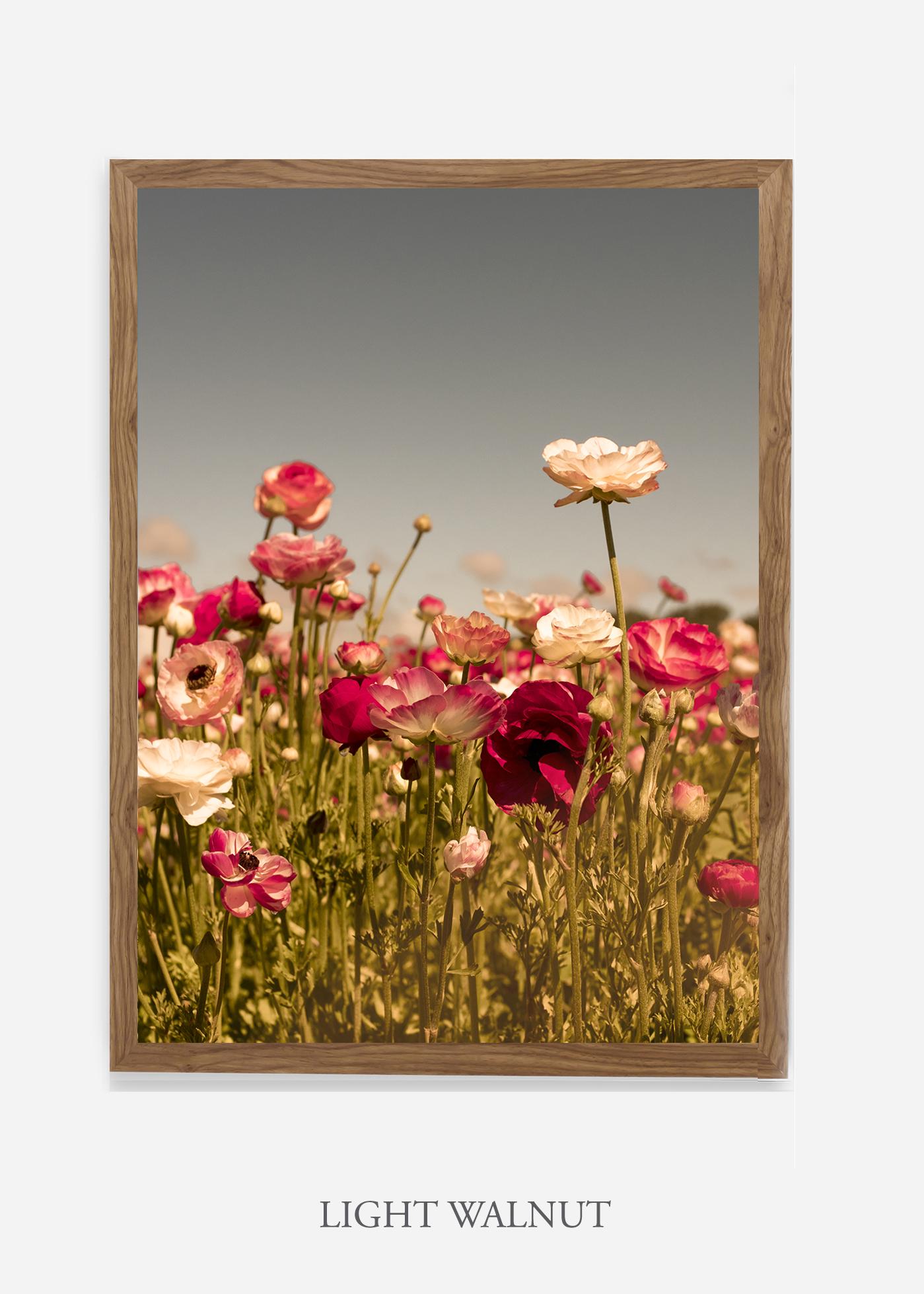 wilder-california-Floral-No.3-light-walnut-frame-no-mat-interior-design-botanical-print-art-floral-art.jpg