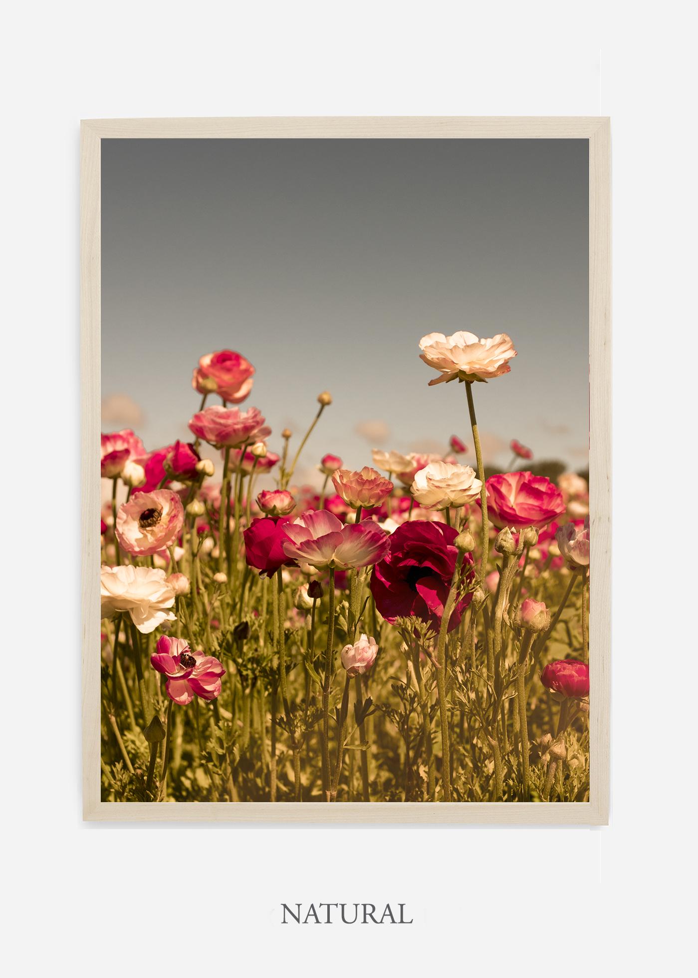 wilder-california-Floral-No.3-natural-frame-no-mat-interior-design-botanical-print-art-floral-art.jpg