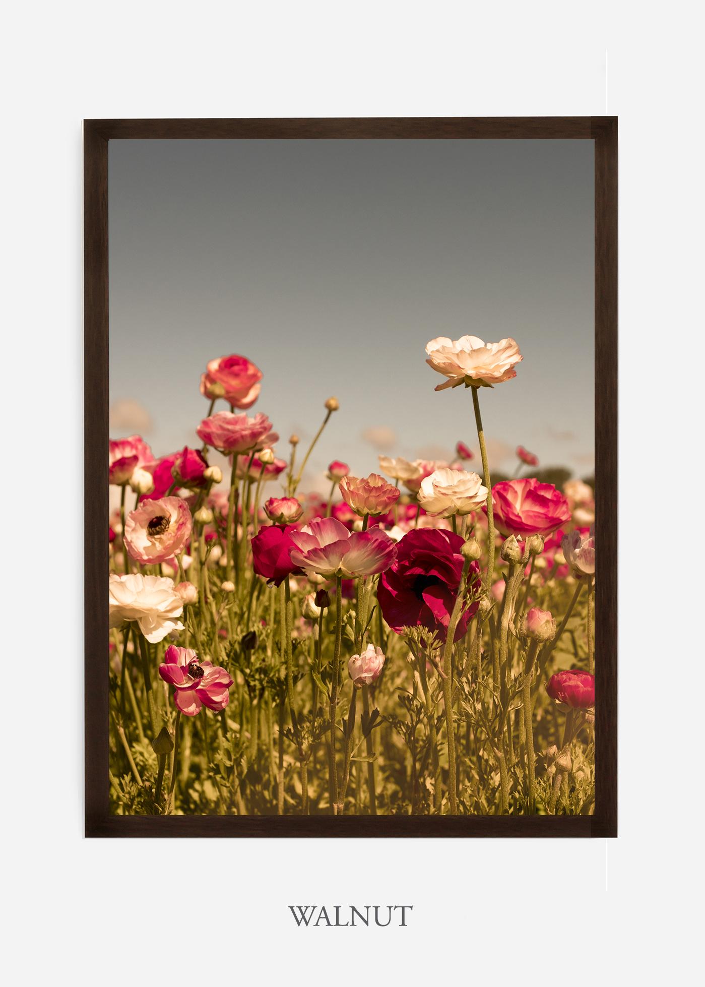 wilder-california-Floral-No.3-walnut-frame-no-mat-interior-design-botanical-print-art-floral-art.jpg