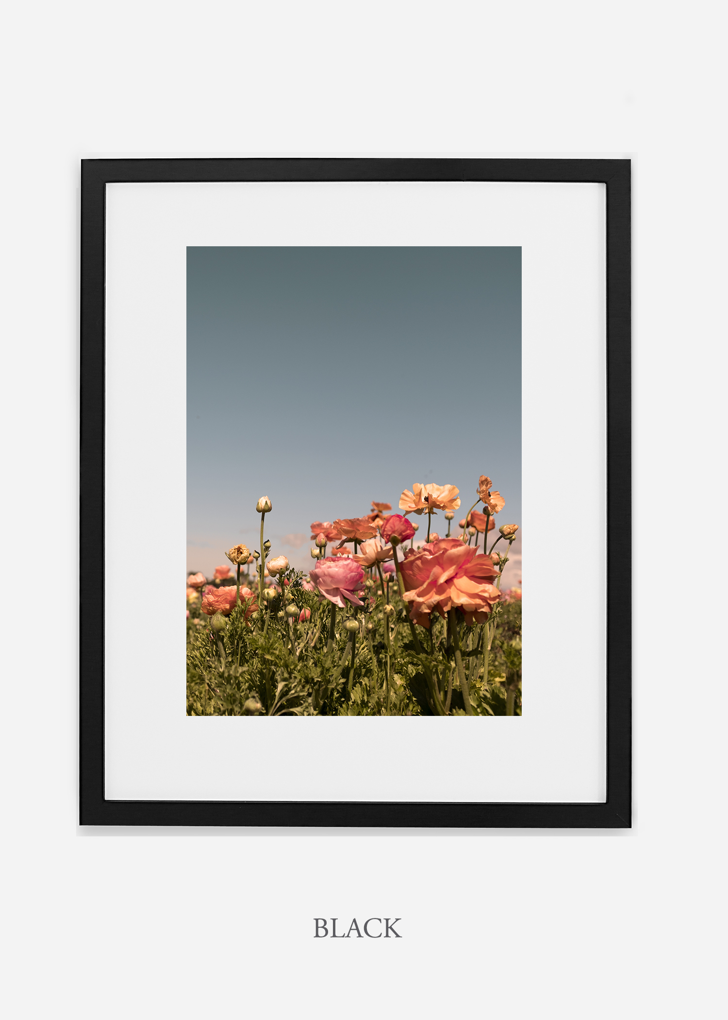 FloraNo.1_blackframe__mat_interiordesign_botanicalprint_art.jpg