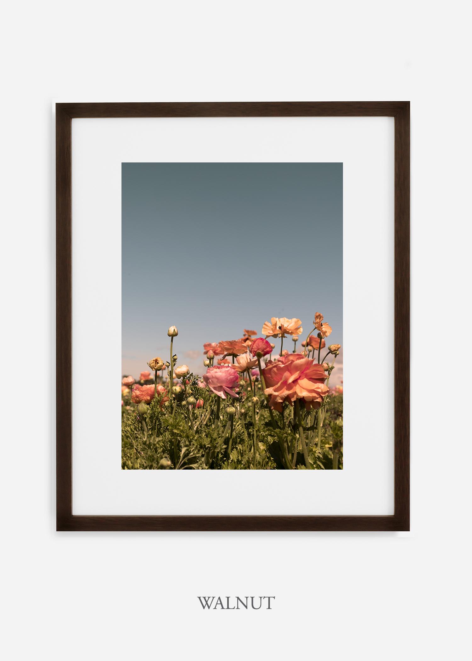 FloraNo.1-dark-walnut-frame_mat-interiordesign-botanicalprint-art.jpg