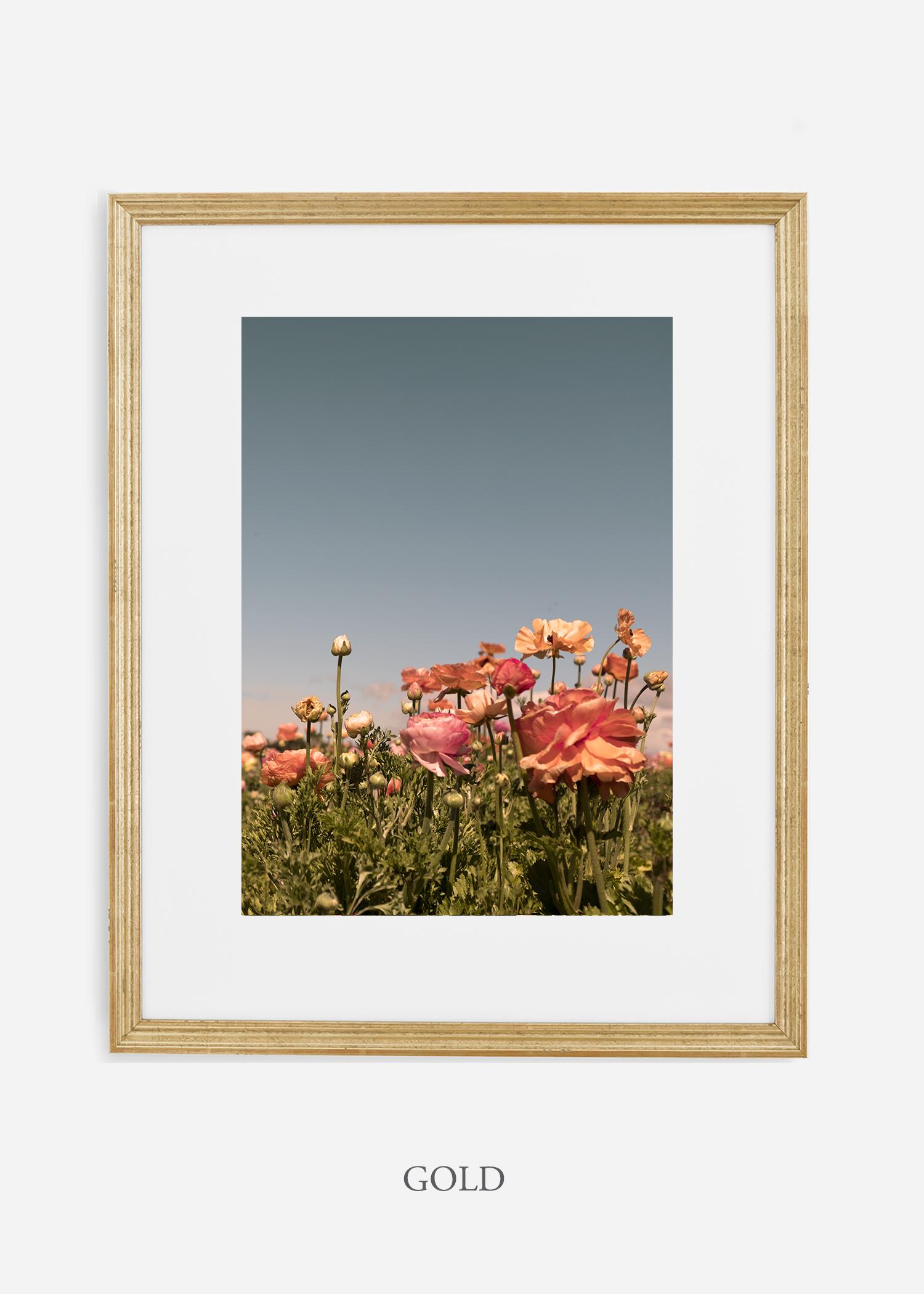 FloraNo.1-goldframe_mat-interiordesign-botanicalprint-art.jpg