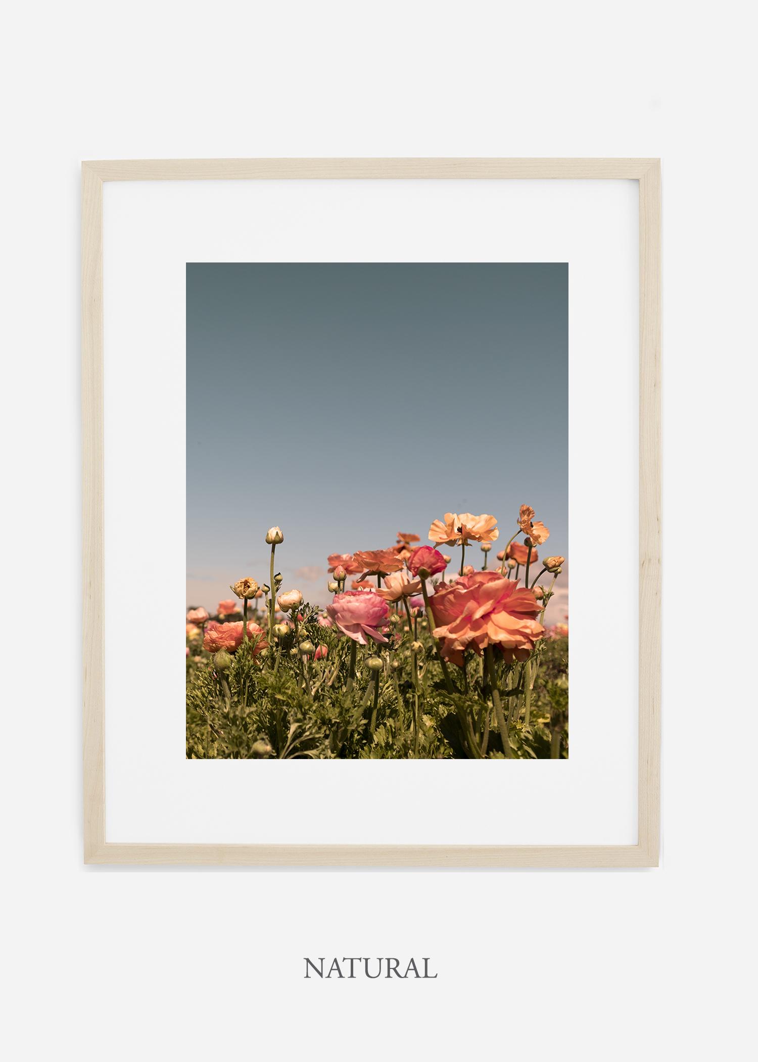 FloraNo.1-natural-wood-frame_mat-interiordesign-botanicalprint-art.jpg