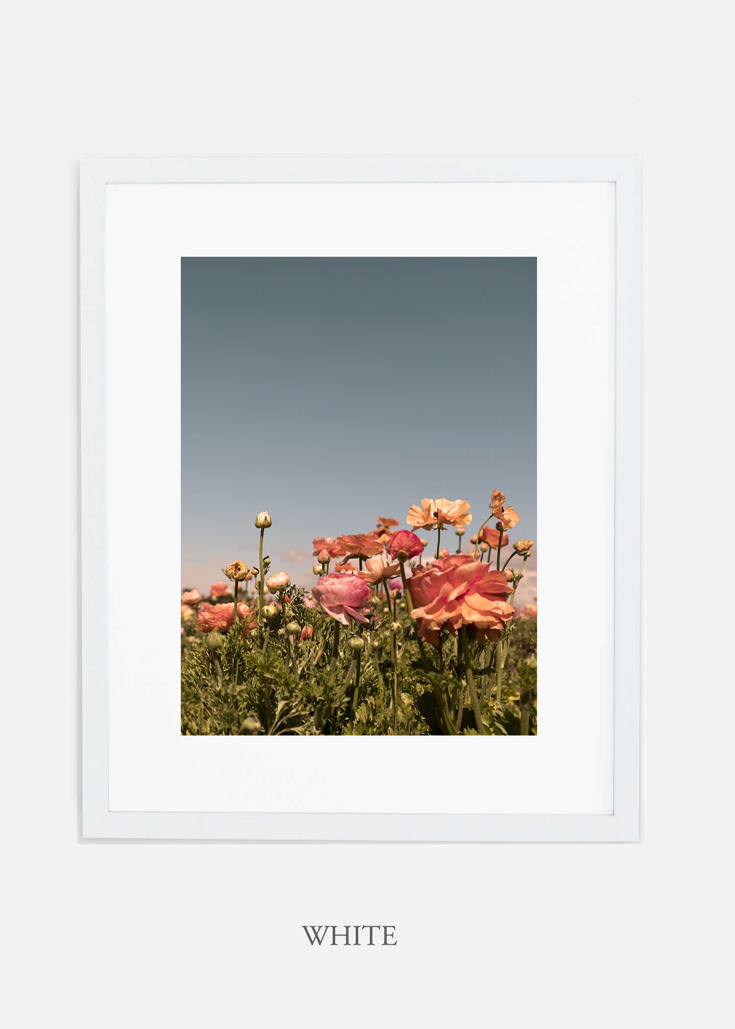 FloraNo.1-white-frame_mat-interiordesign-botanicalprint-art.jpg