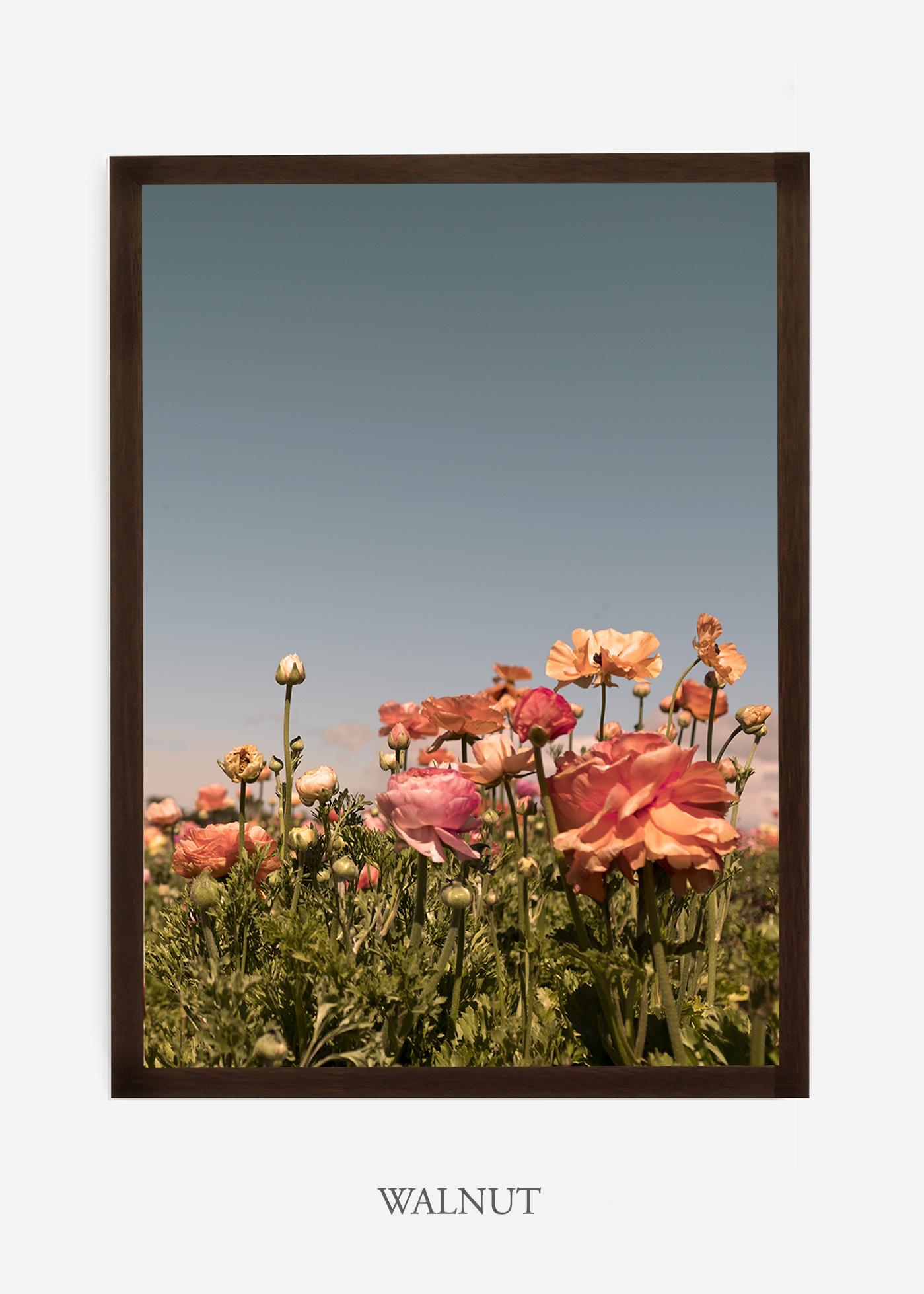 NoMat-Dark_Walnut-Frame-Floral-No-1-Wilder-California-Art-Floral-Home-decor-Prints-Dahlia-Botanical-Artwork-Interior-design.jpg