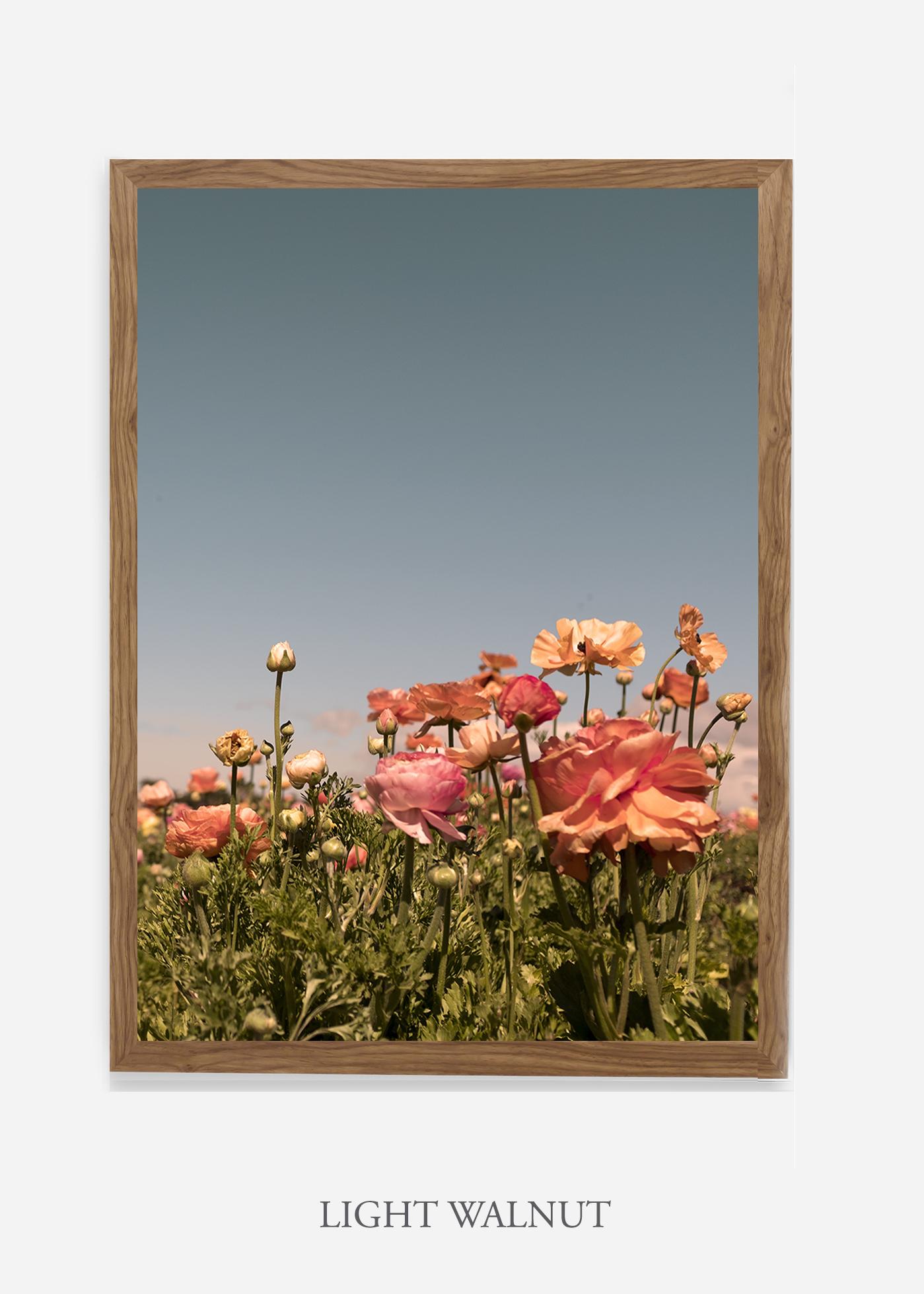 NoMat-Light-Walnut-Frame-Floral-No-1-Wilder-California-Art-Floral-Home-decor-Prints-Dahlia-Botanical-Artwork-Interior-design.jpg