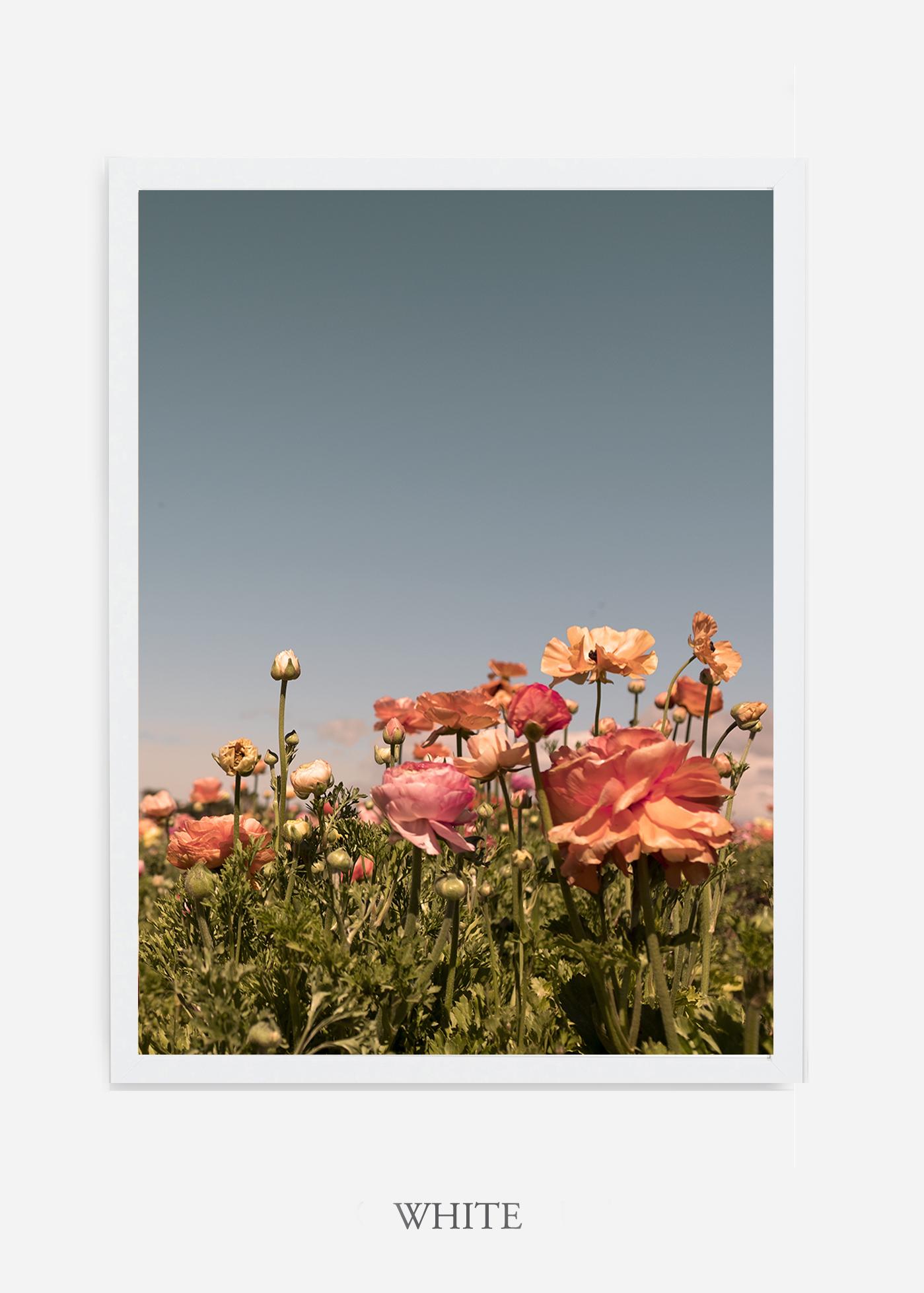 NoMat-White-Frame-Floral-No-1-Wilder-California-Art-Floral-Home-decor-Prints-Dahlia-Botanical-Artwork-Interior-design.jpg