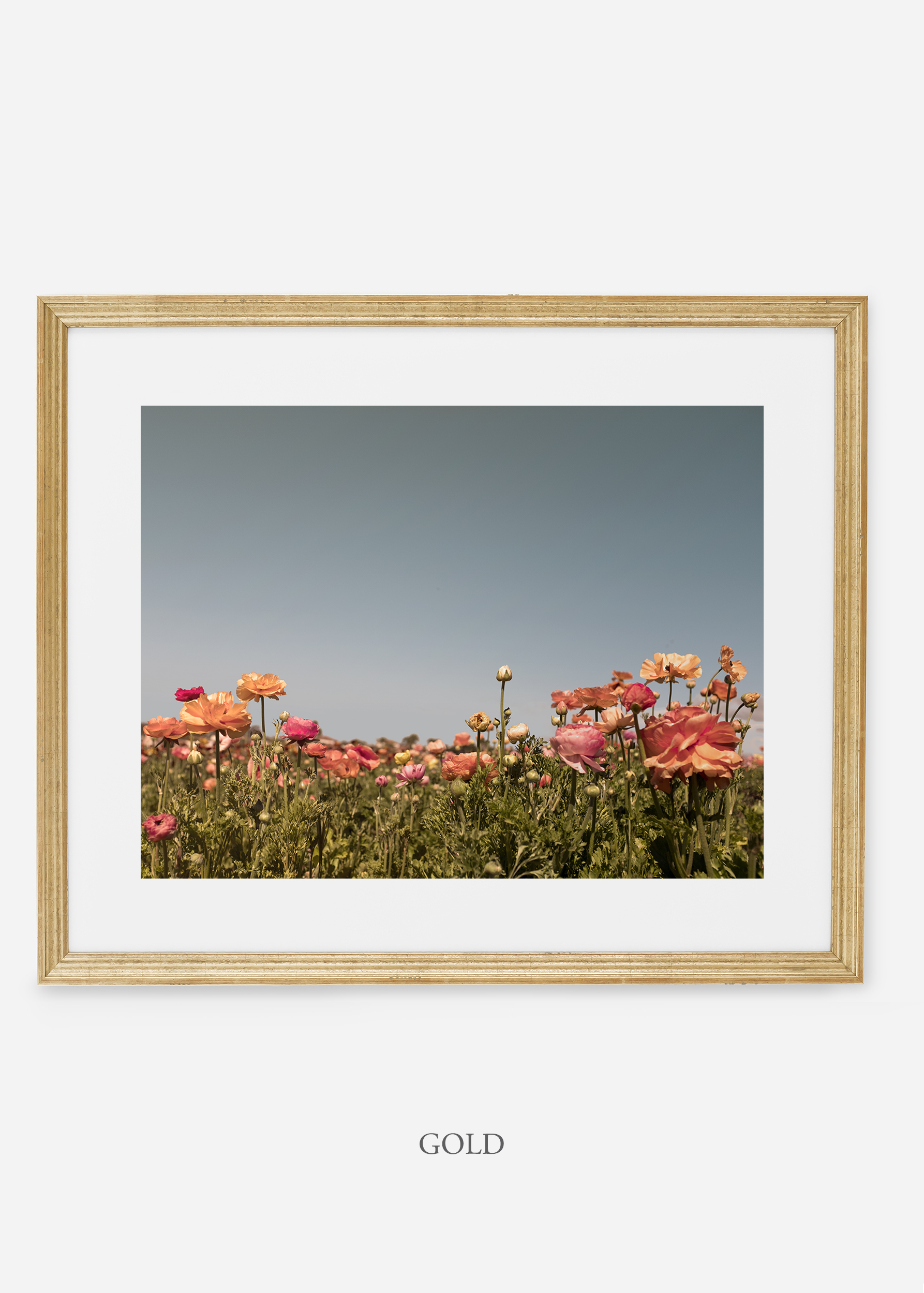 wilder-california-goldl-frame-flora-5-minimal-botanical-print-art-interior-design.jpg