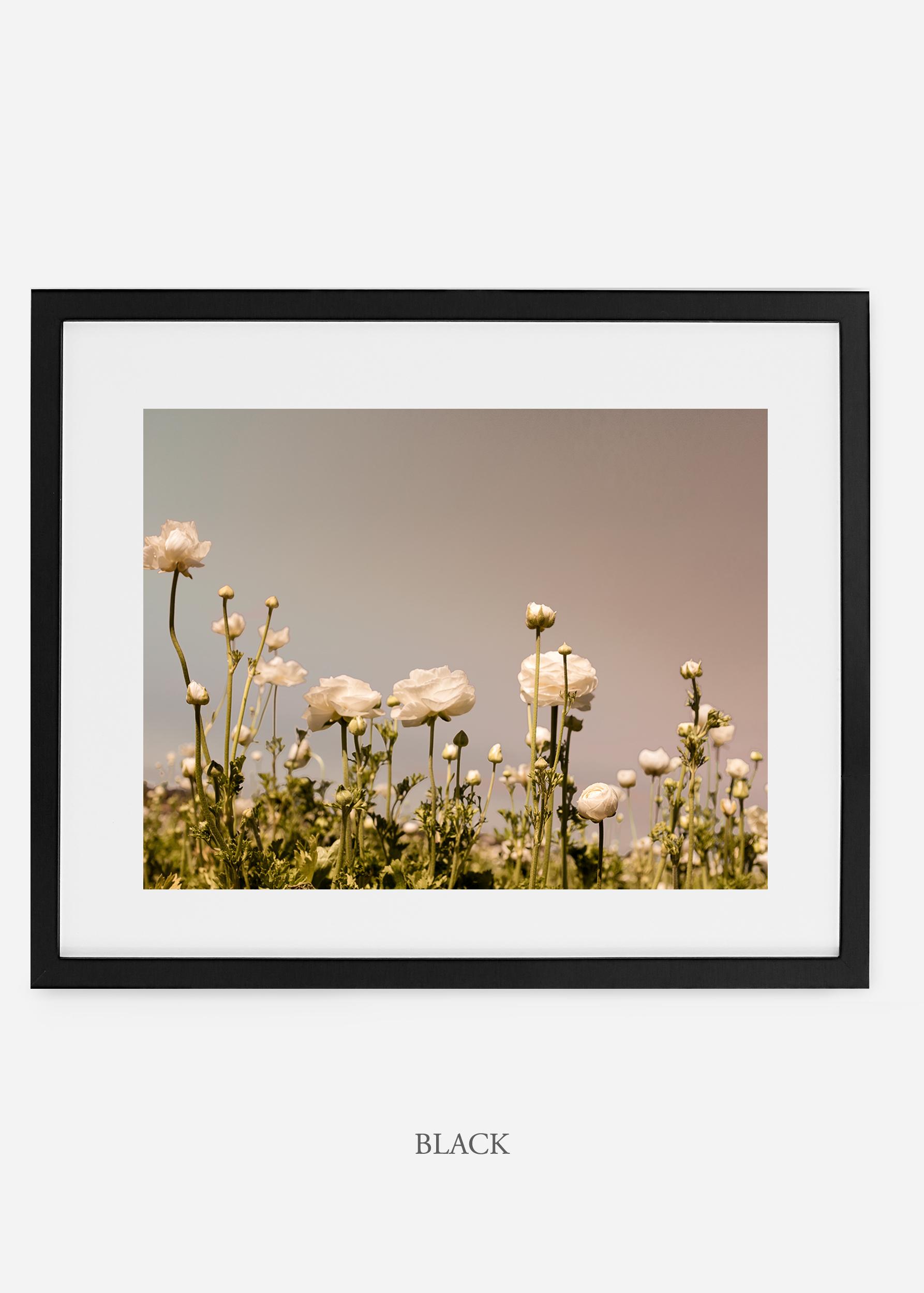 wilder-california-black-frame-flora-6-minimal-botanical-print-art-interior-design.jpg