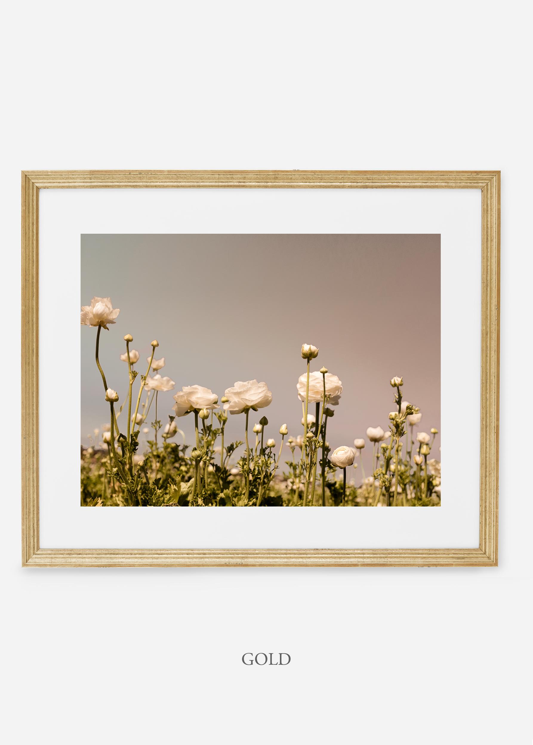 wilder-california-goldl-frame-flora-6-minimal-botanical-print-art-interior-design.jpg