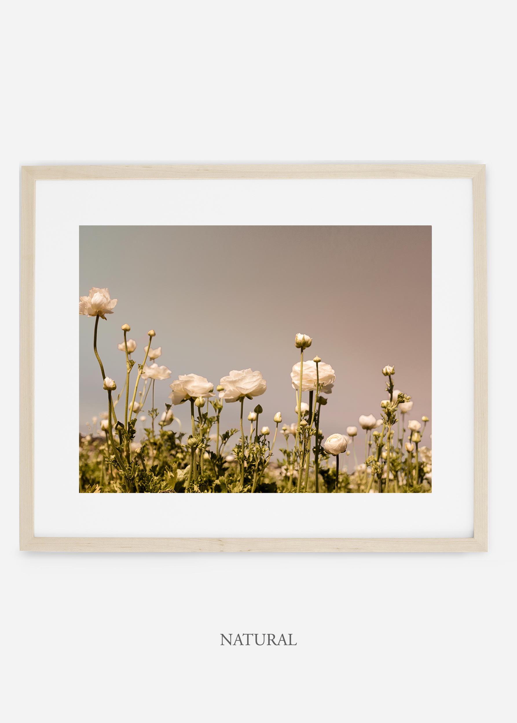 wilder-california-natural-frame-flora-6-minimal-botanical-print-art-interior-design.jpg