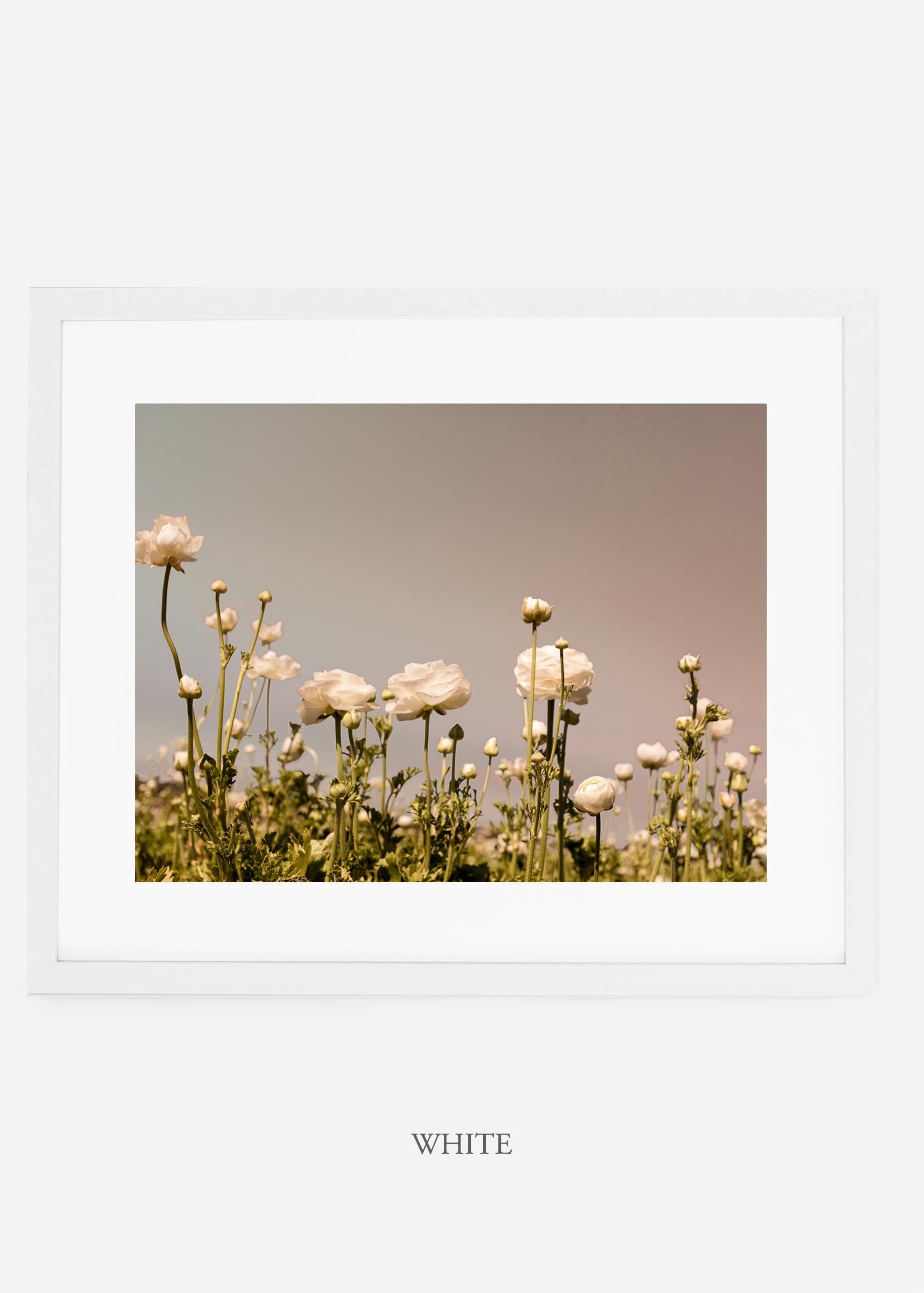 wilder-california-white-frame-flora-6-minimal-botanical-print-art-interior-design.jpg