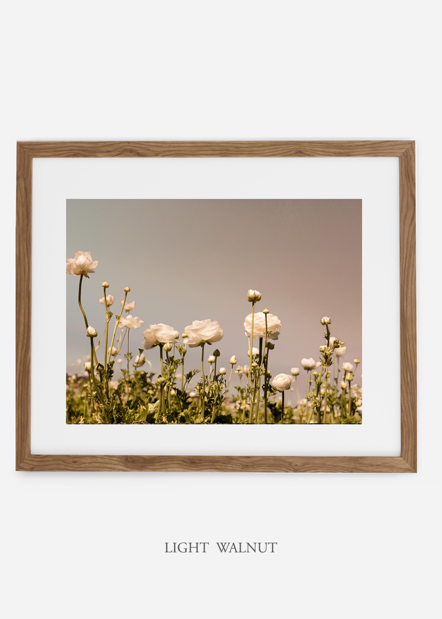 NoMat-Light-Walnut-Frame-flora-6-Wilder-California-Art-Floral-Home-decor-Prints-Dahlia-Botanical-Artwork-Interior-design.jpg